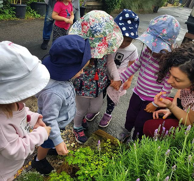 "Nurturing the children's love of gardening 🌱🌱🌱 ""If you want a child's mind to grow you must first plant a seed""  ROB FLOYD"