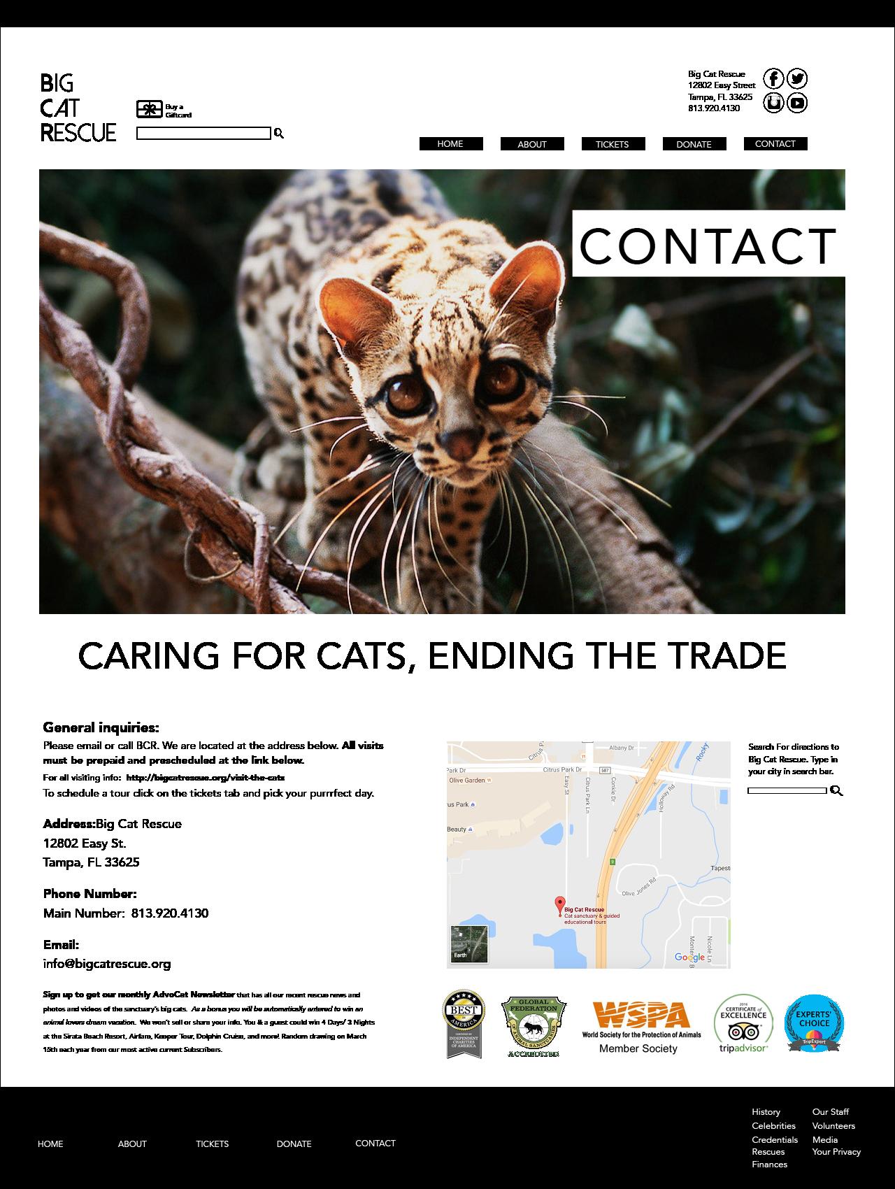 Big Cat Rescue Website And Logo Rebrand Nizborski Design