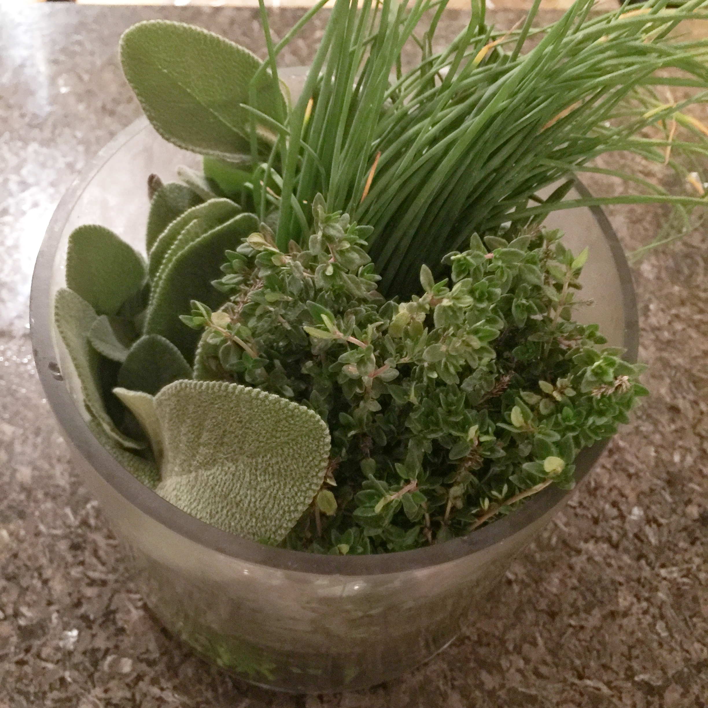 herbs-from-local