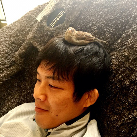 sparrow-on-my-head.jpg