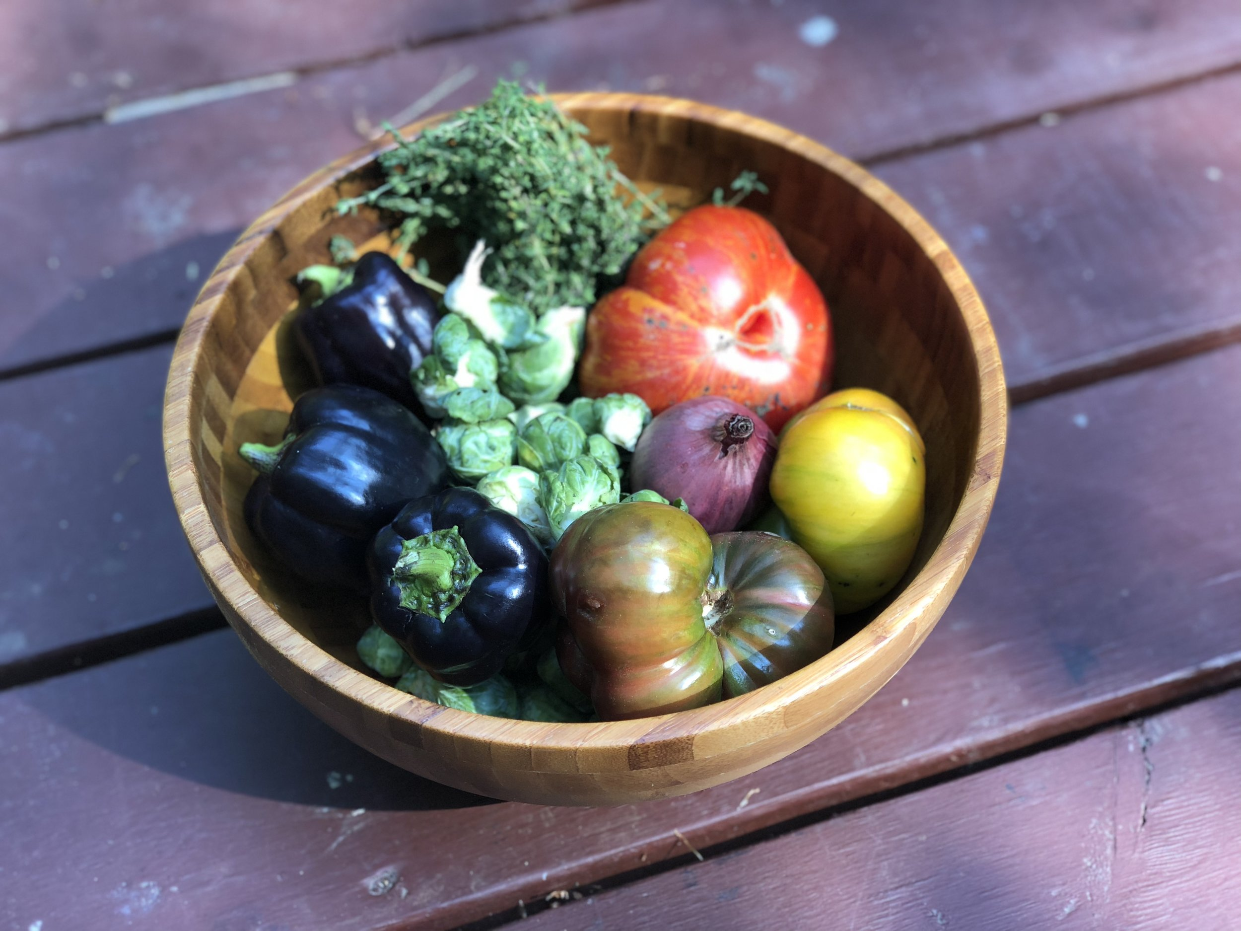 Vegetables from SOWA farmer's Market