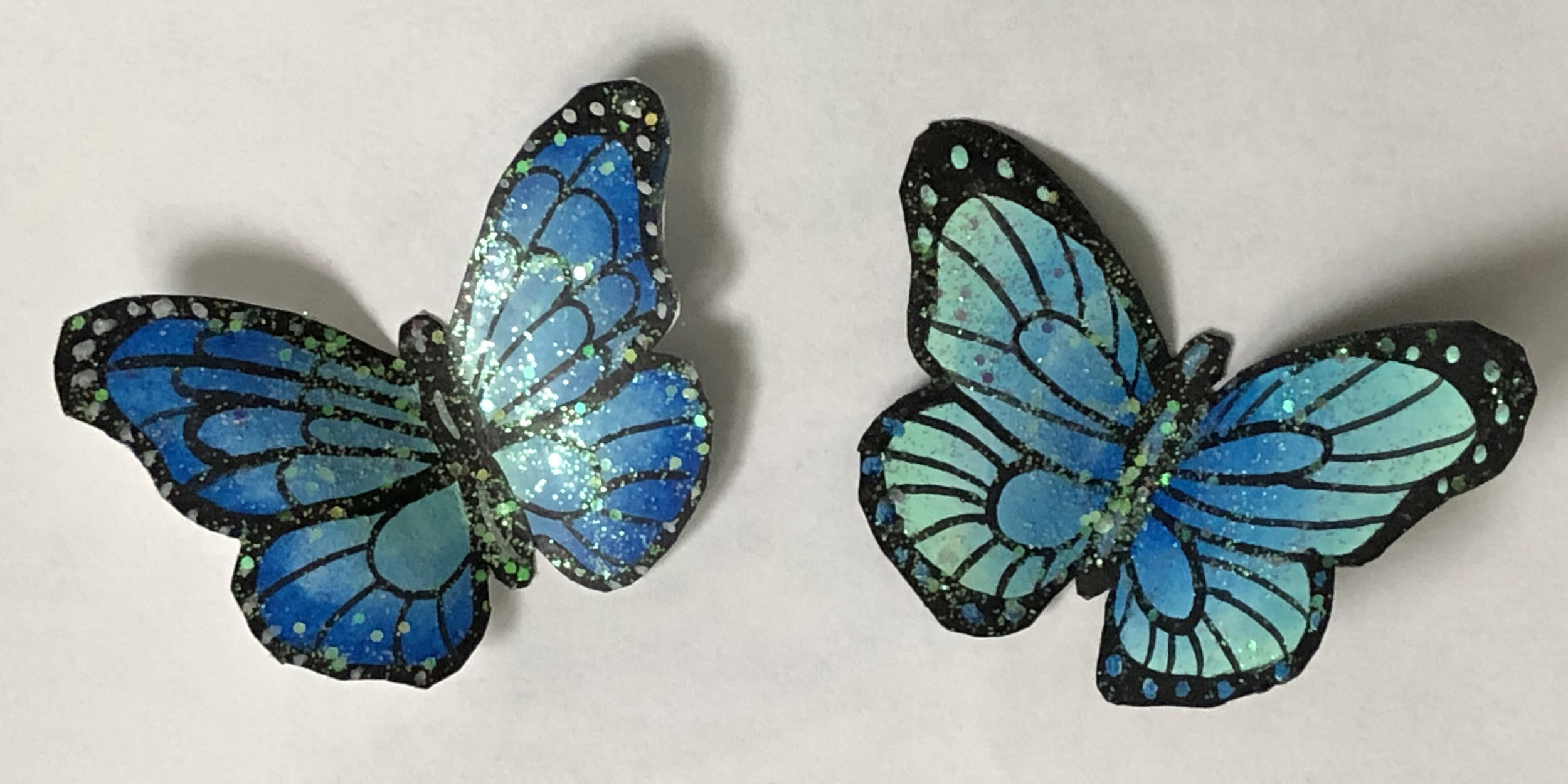 Butterflycrop.jpg