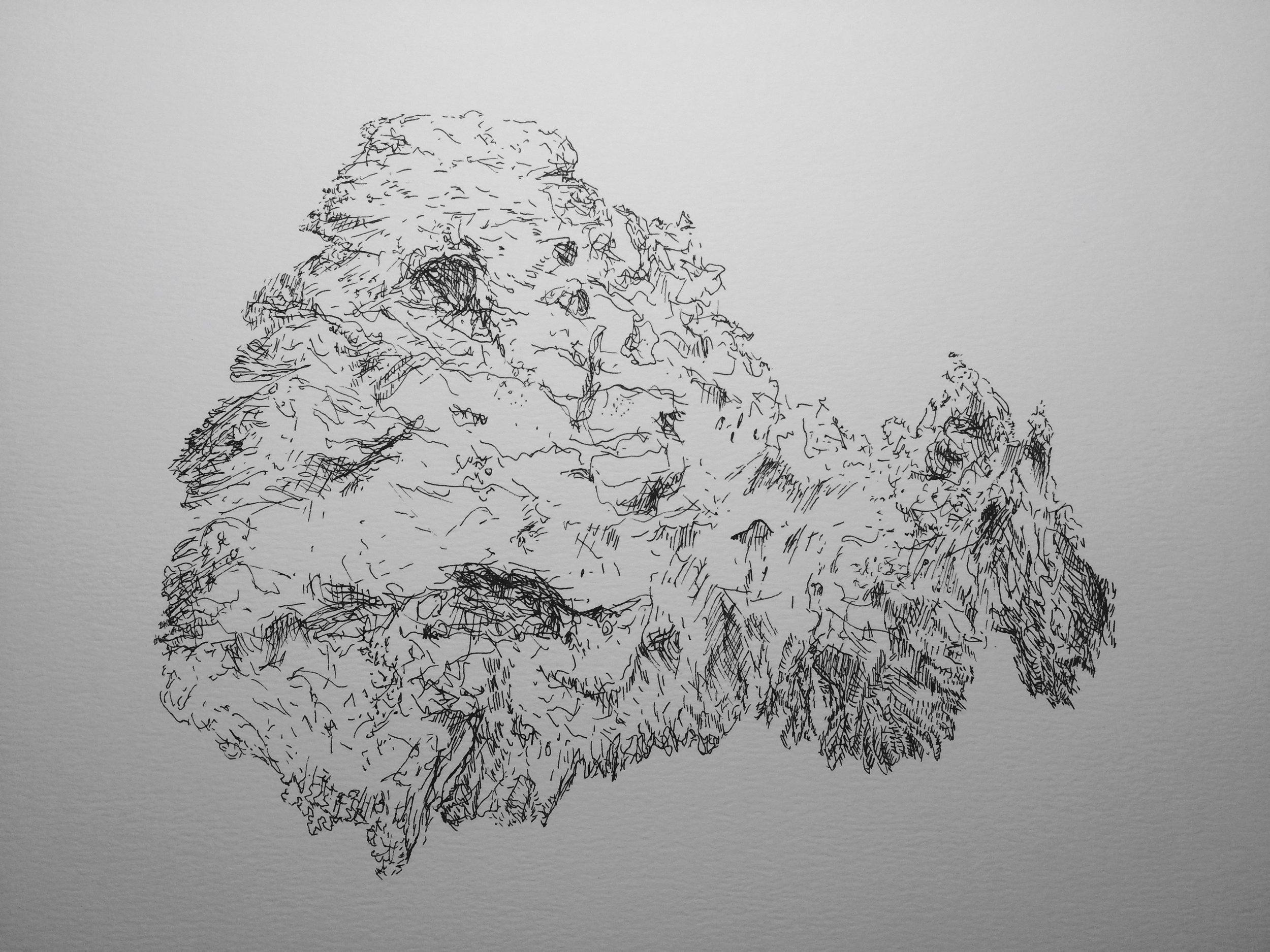 Drawing (2015)