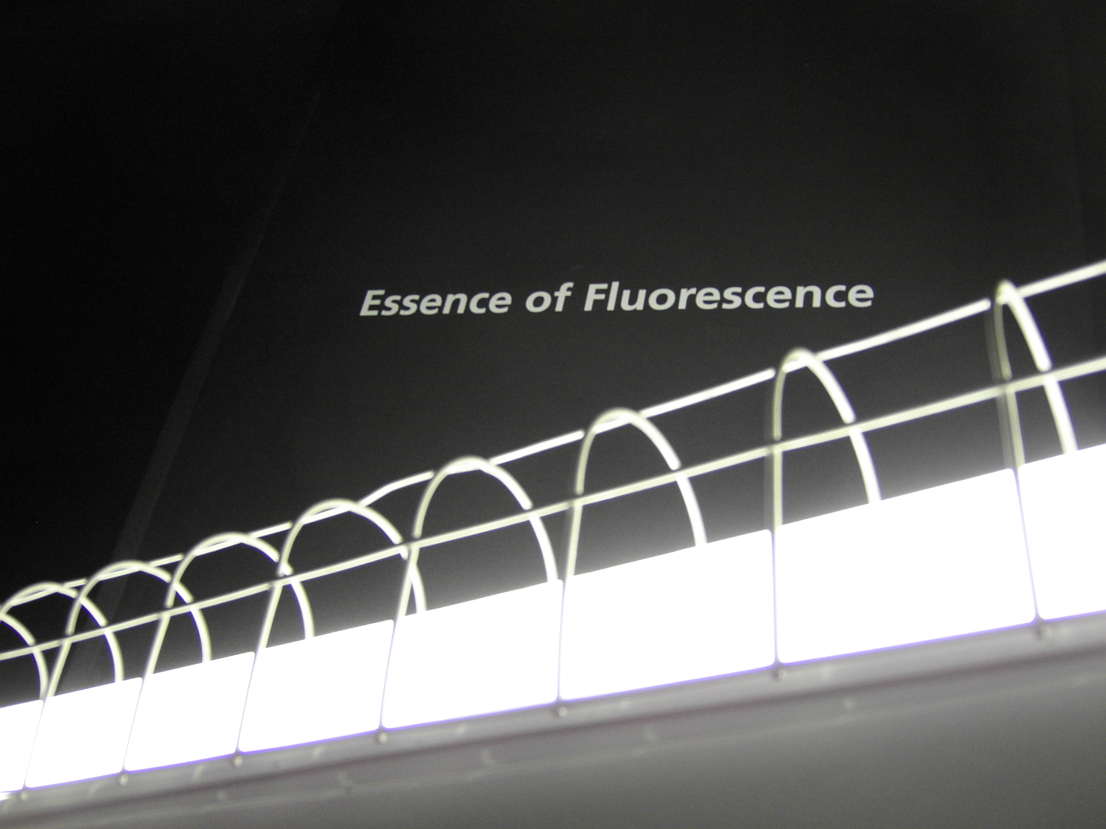 The Essence of Fluorescence   at The Hayward Gallery, 2006.