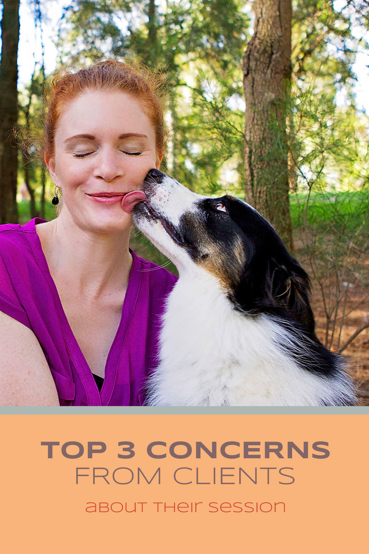 Top three (3) concerns from clients about their session | Sydney Pet Photographer