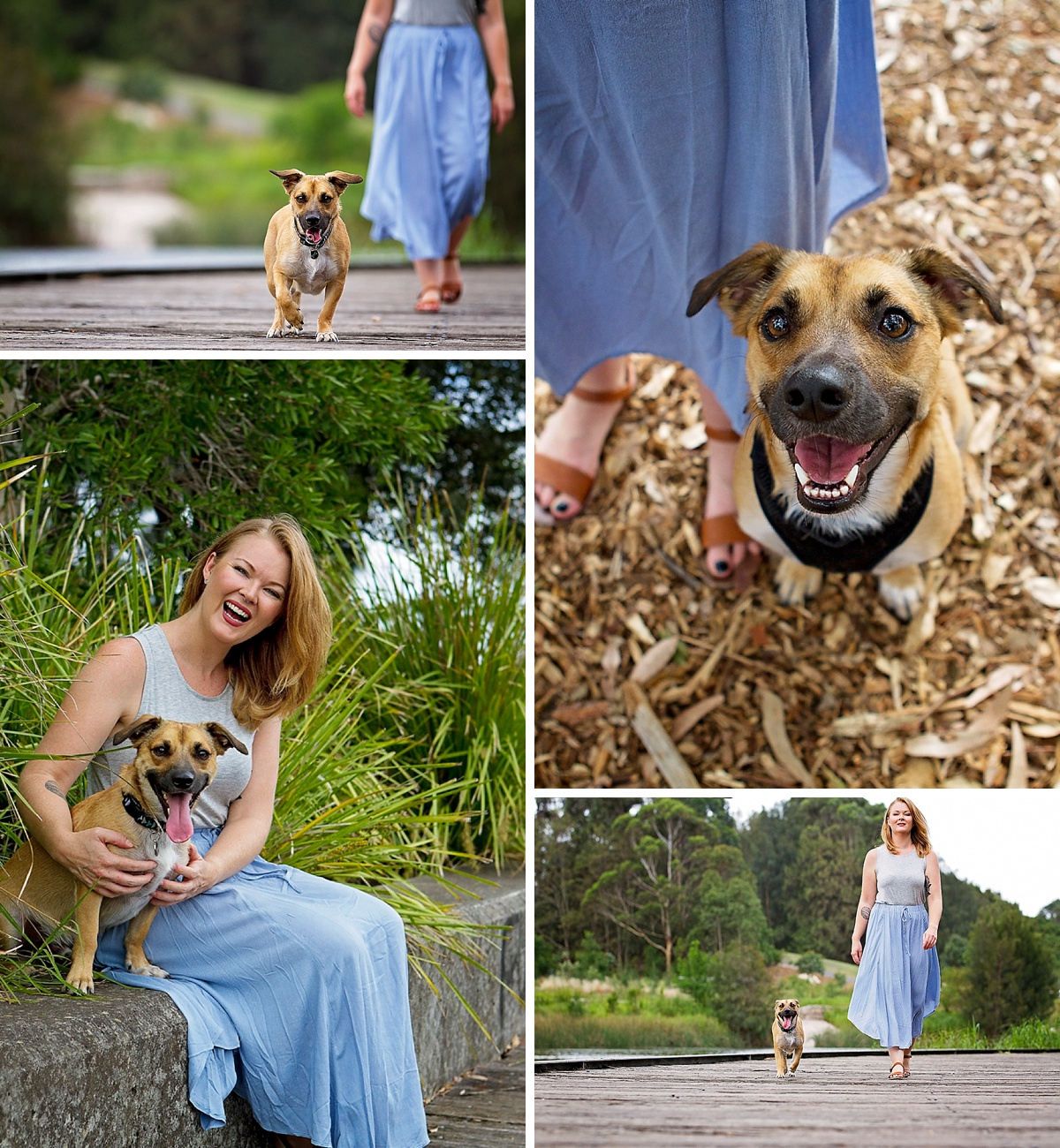 Say hello to the sweet little corgi x german shepherd, Floki who along with his mum took part in the Dog Days of Summer an initiative started by Sydney pet photographer Pawtastic Photography.