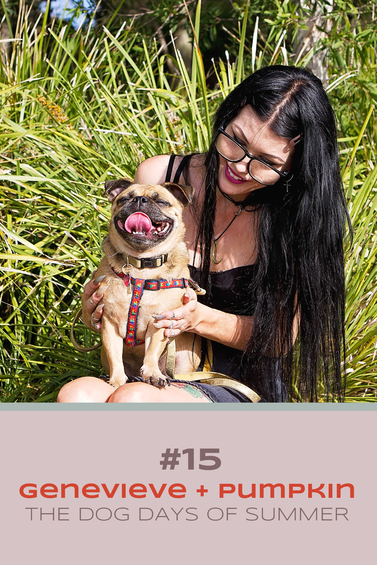 Pug dog sits in bliss in her mum's lap enjoying a nice pat during her Dog Days of Summer photo session with Pawtastic Photography.