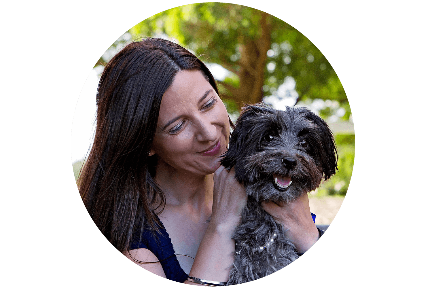 Dog getting a pat from her owner at Sydney Park. Photo by Pawtastic Photography | Sydney Pet Photographer