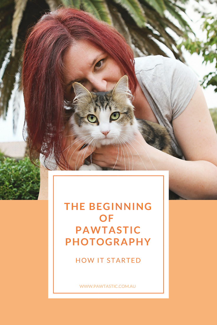 In this weeks post I'm taking you all the way back to the beginning of Pawtastic Photography and sharing the story of how my business started and how I started photographing pets.