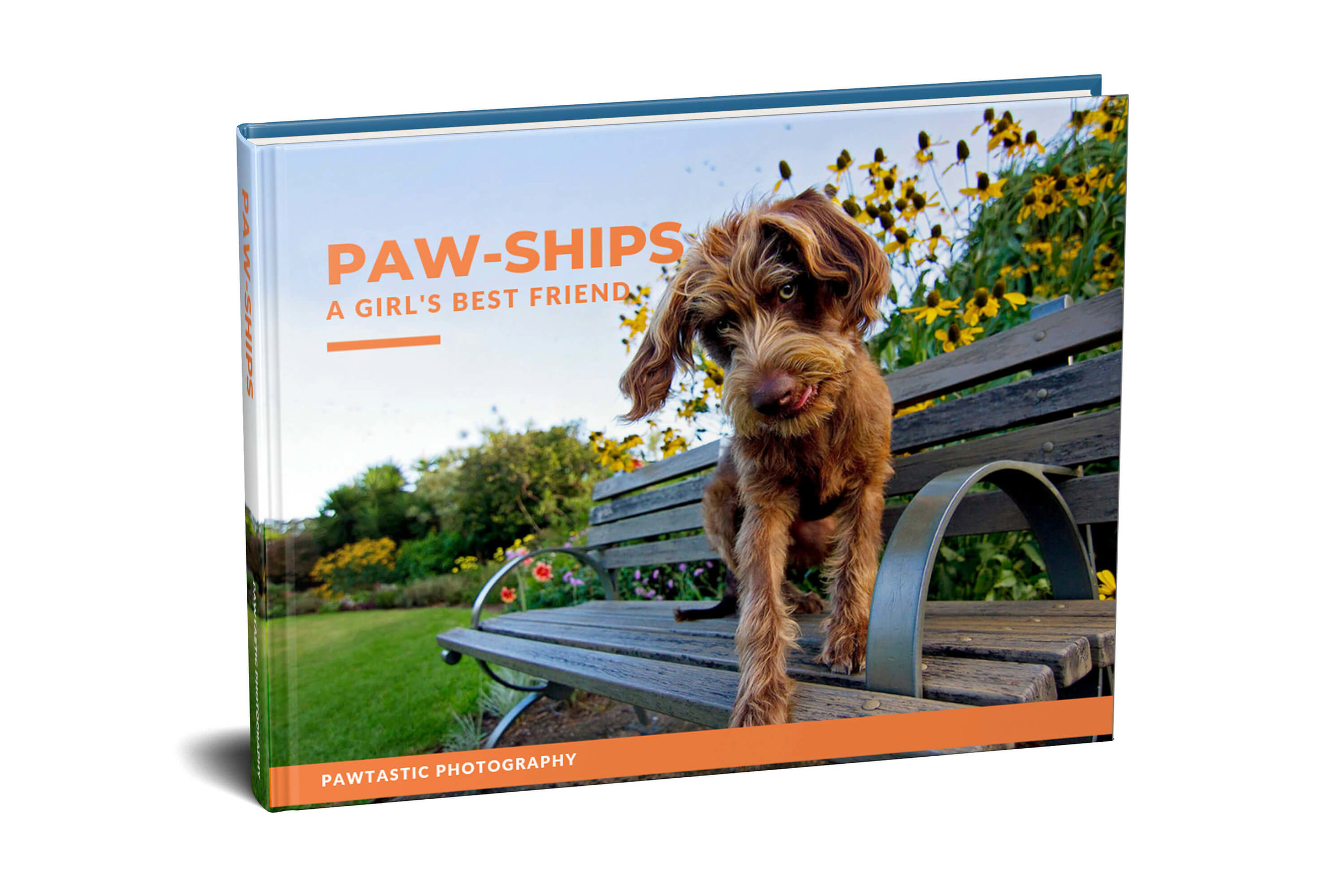 Paw-Ships Book Cover.jpg