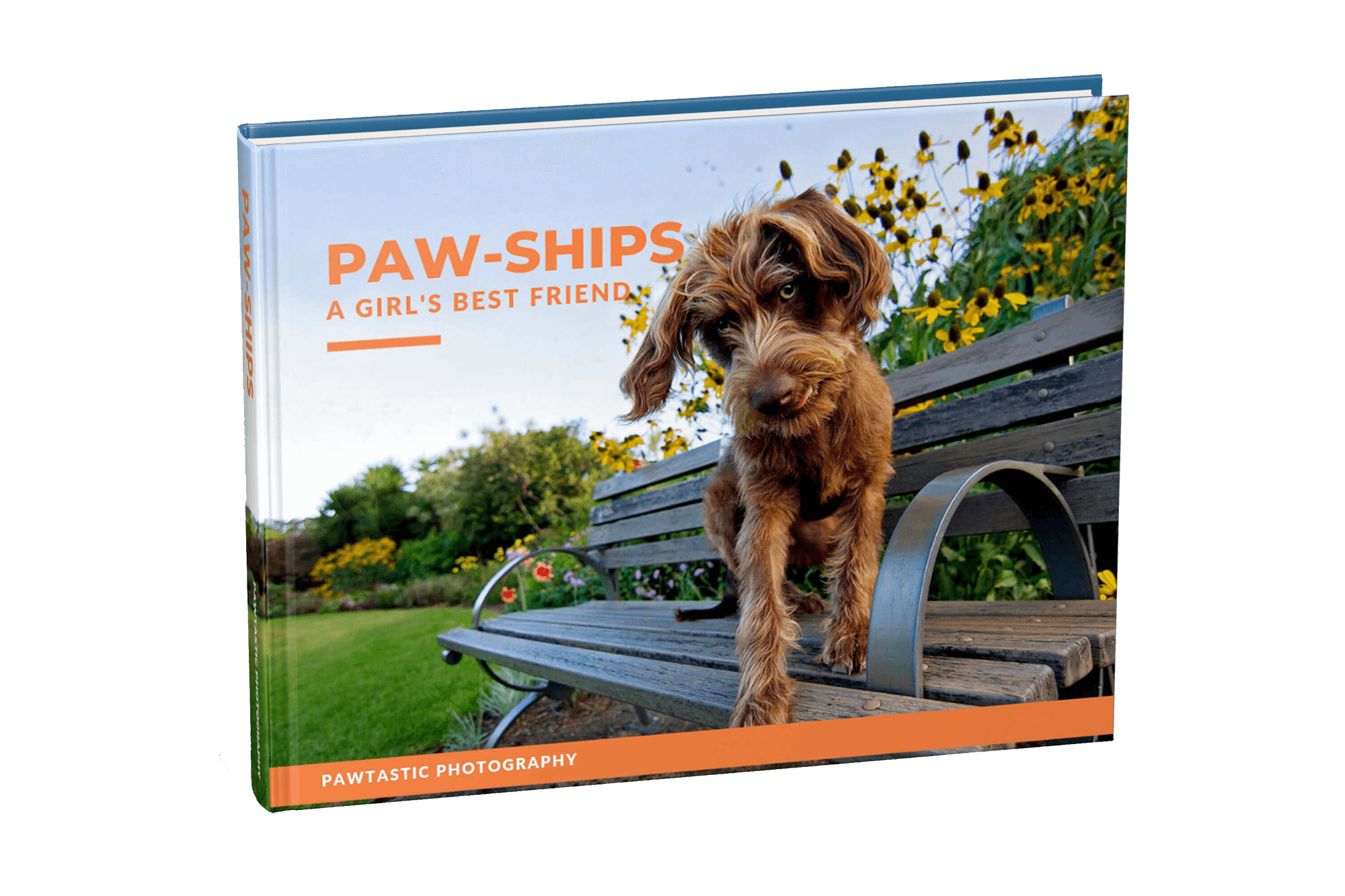 Paw-Ships Book Cover (1).png