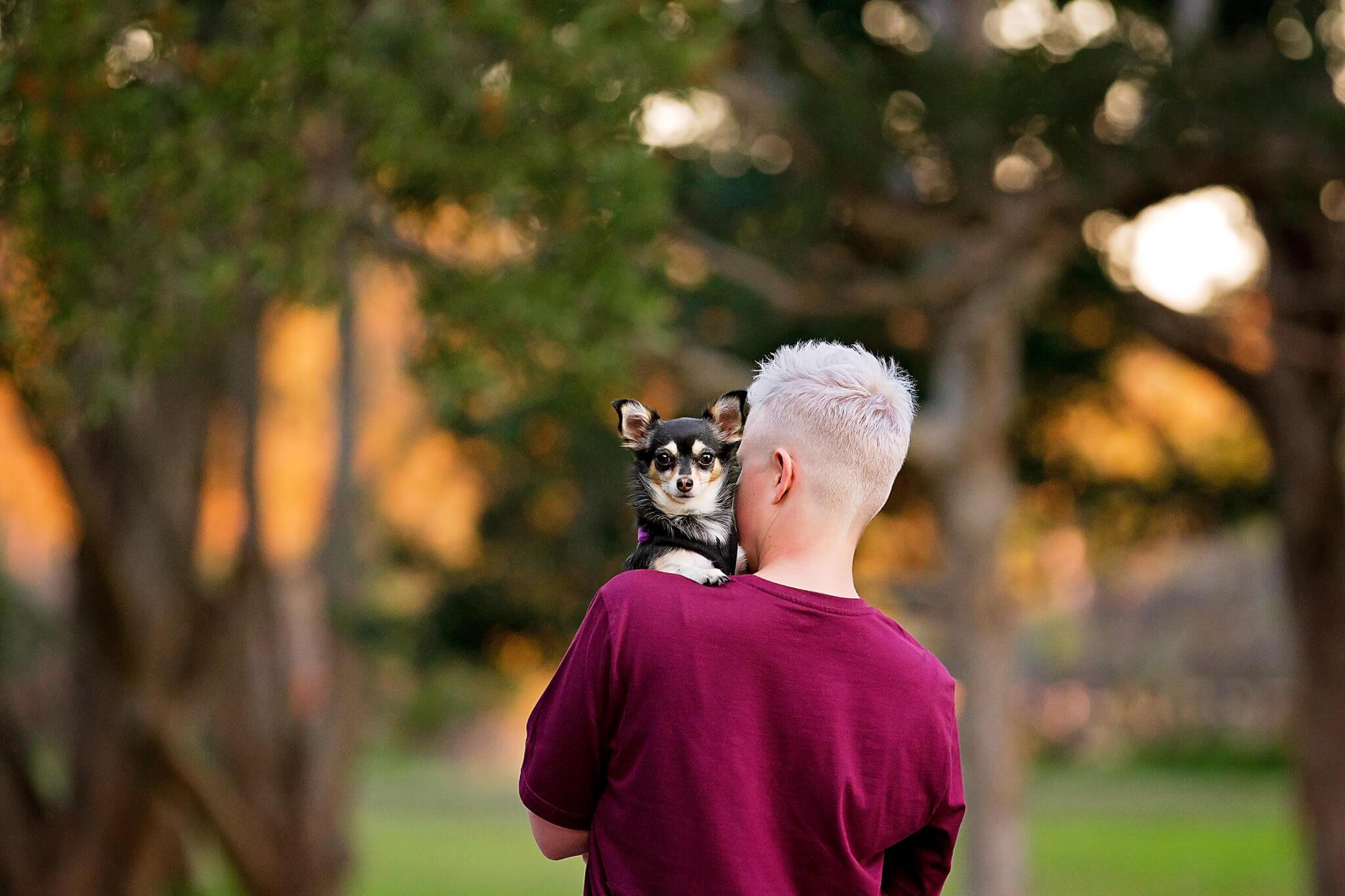 Pet-photography.jpg