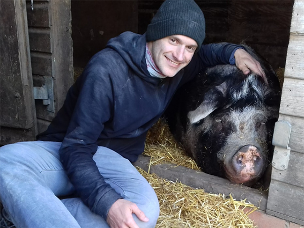 Author with Pig Violet at    Brook Farm Animal Sanctuary   , March 2019