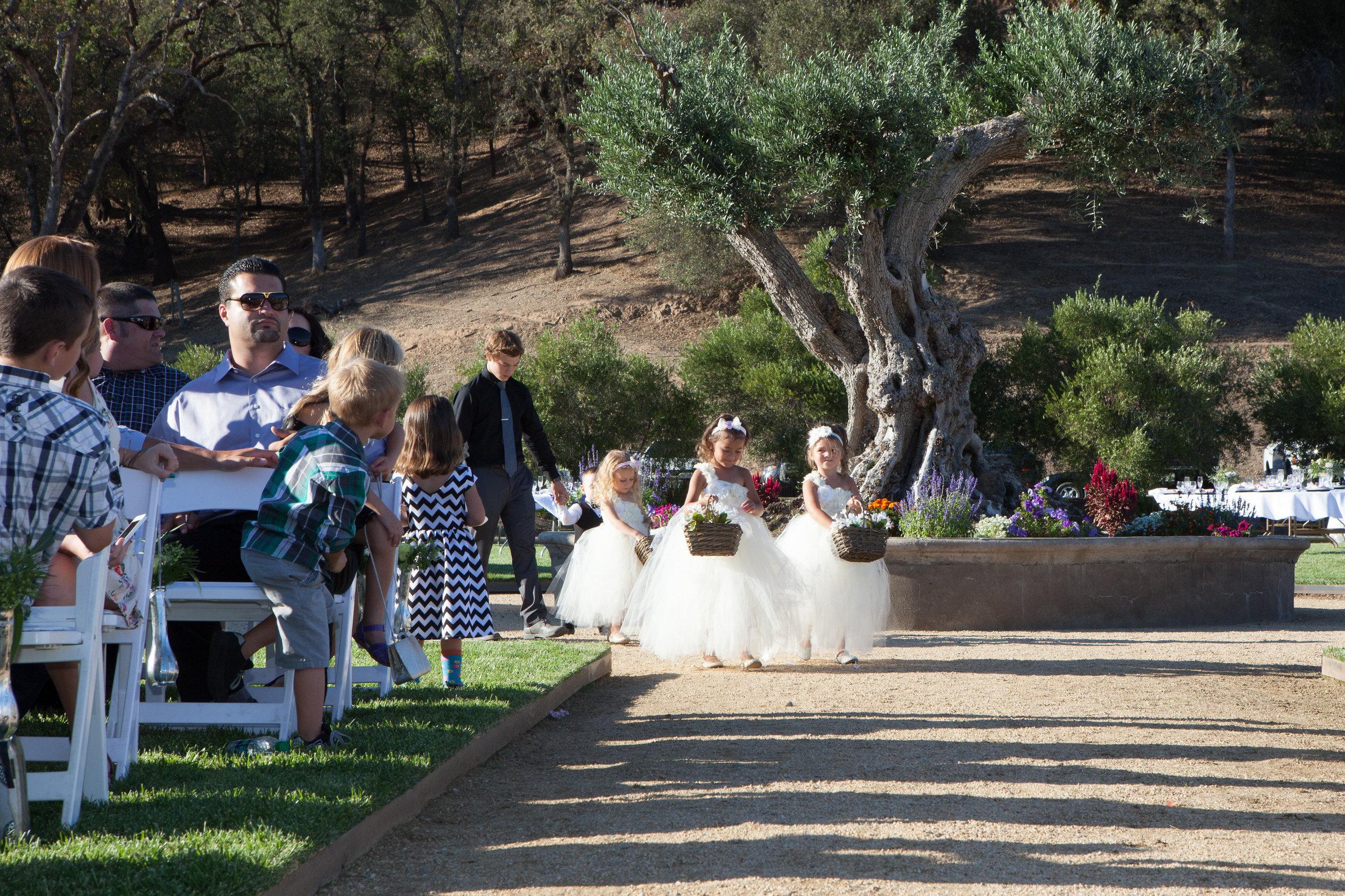 ford-wedding-1258 copy 2.jpg