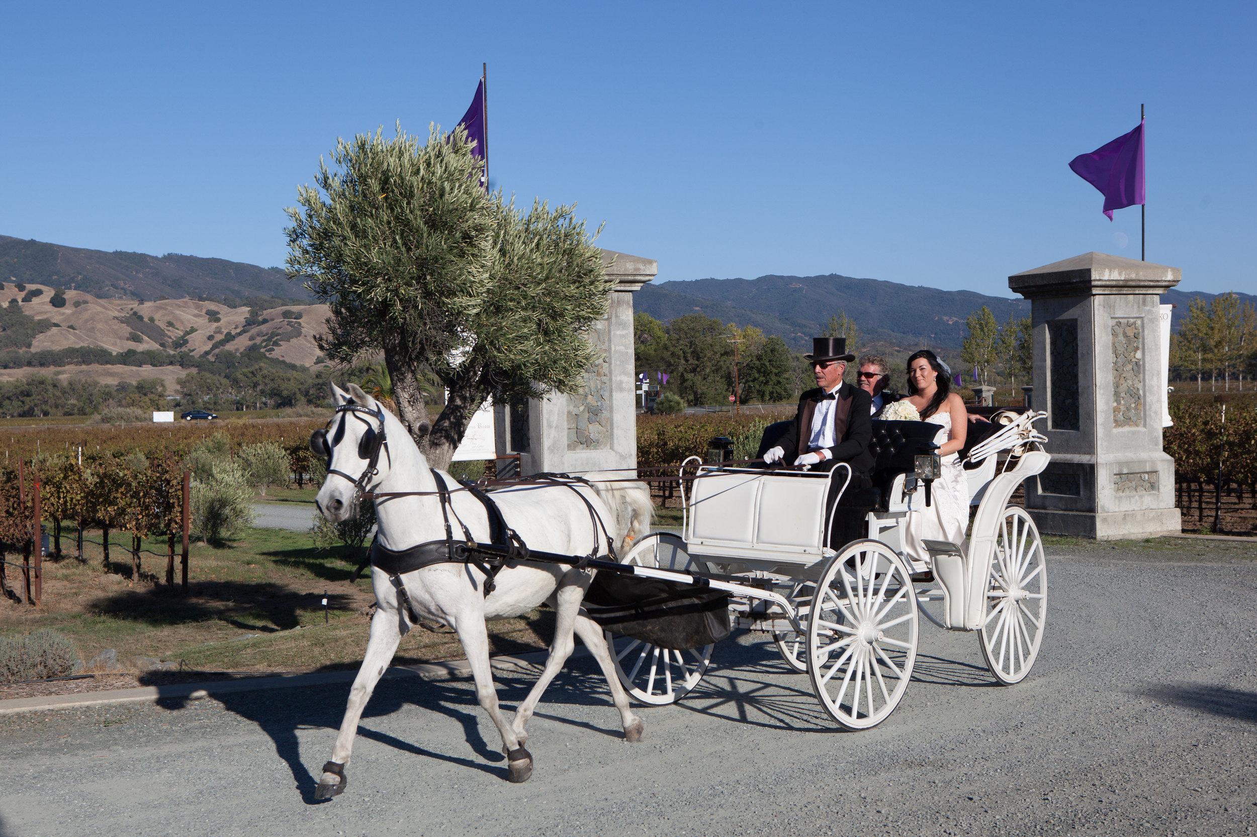 ford-wedding-1276 copy 2.jpg