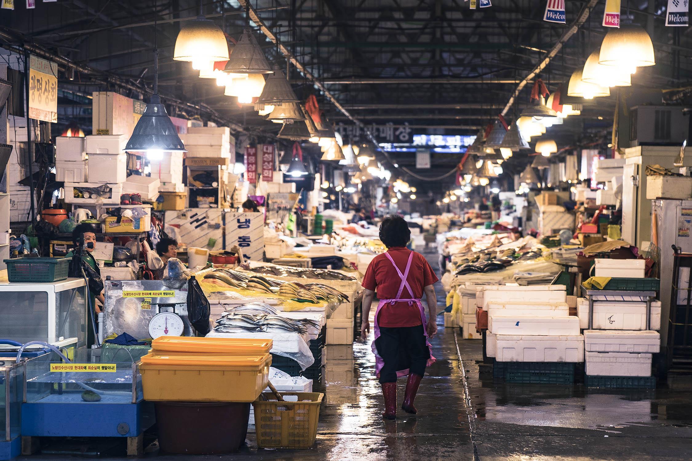 empty noryangjin fish markets
