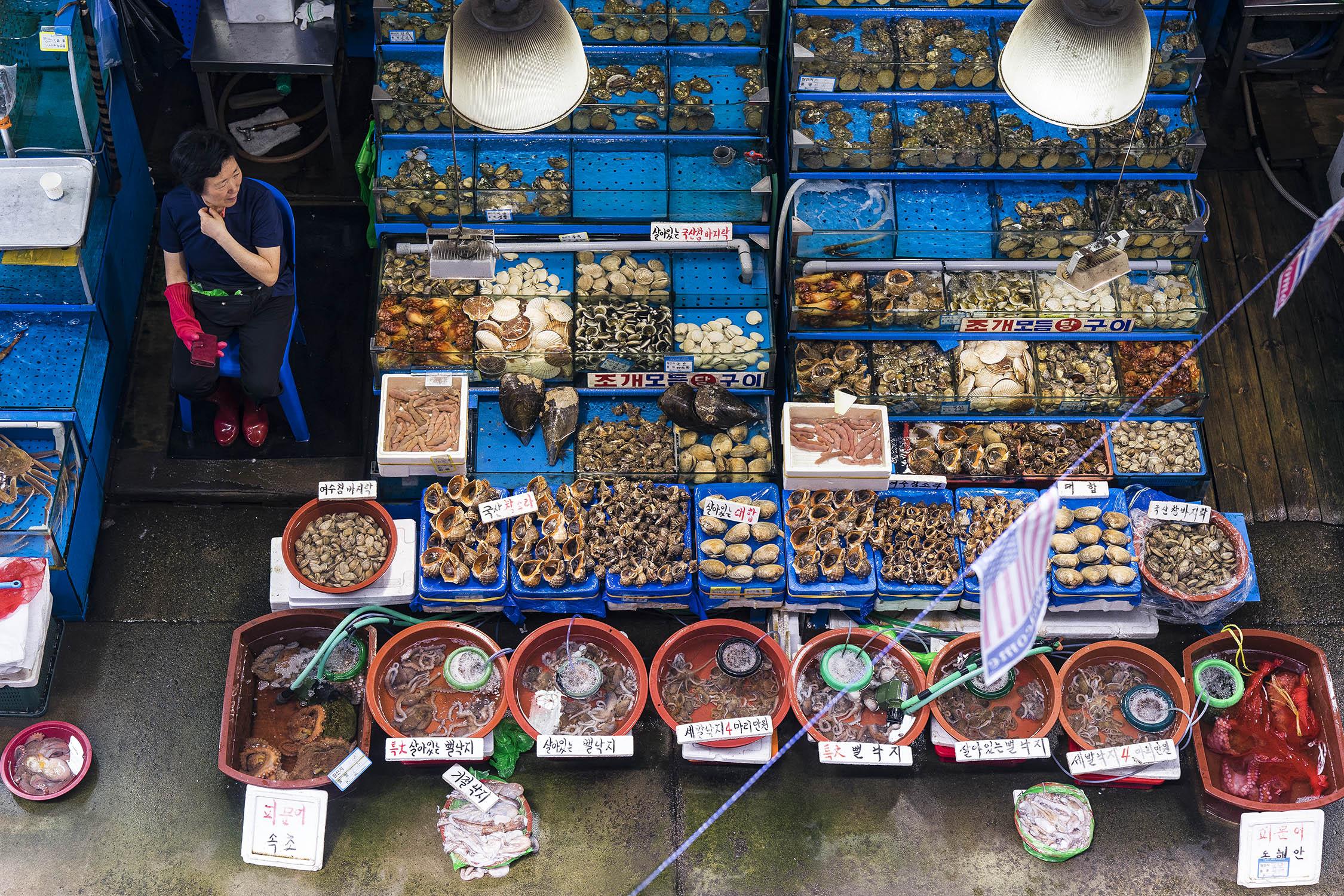 noryangjin seafood market Seoul