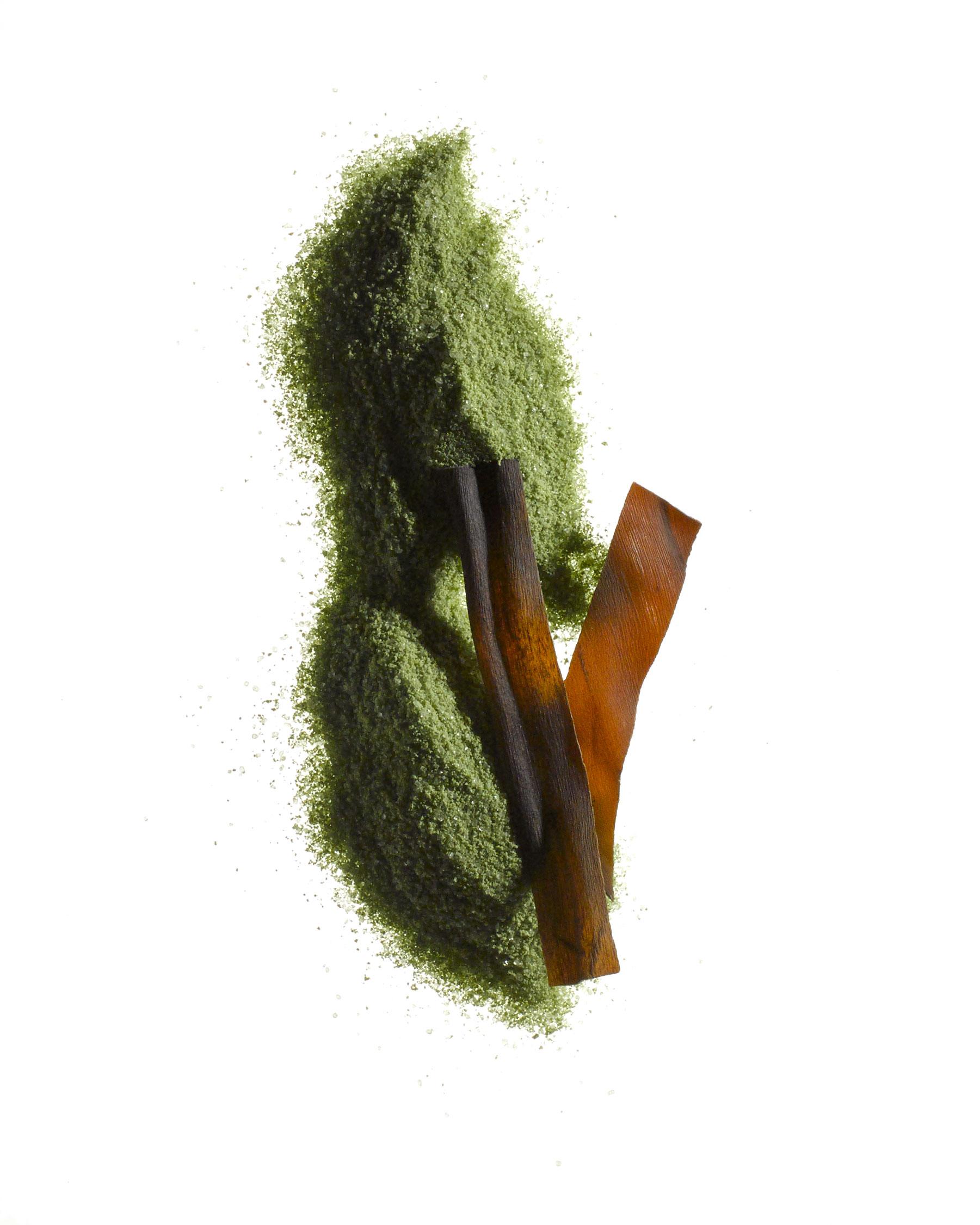macha-and-seaweed.jpg