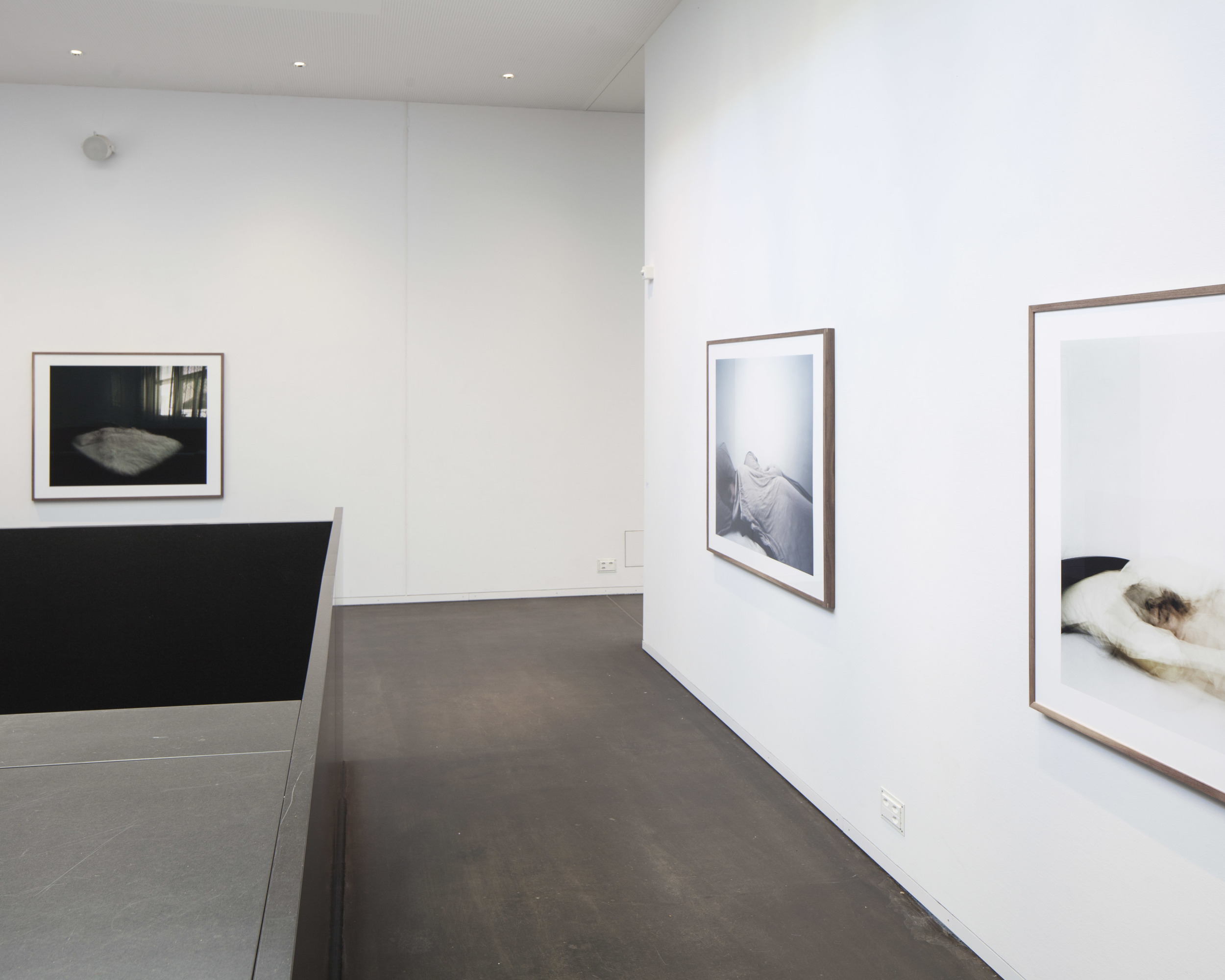 Oeuvres: Eduardo Serafim
