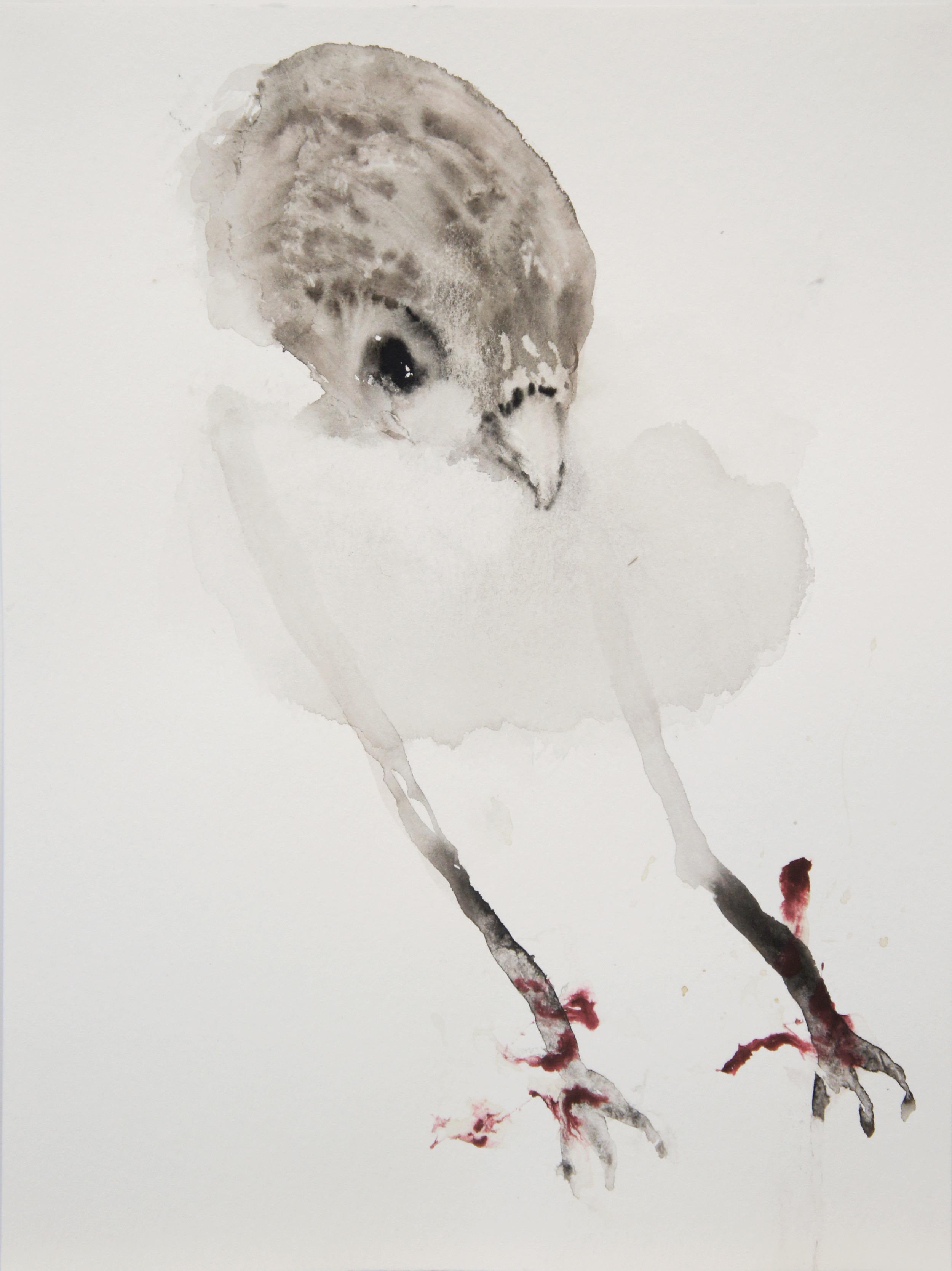 """Guy Oberson, """"Bird (Ciel perdu 15.2.15)"""", aquarelle sur papier bambou, 24 x 32 x cm, 2015"""