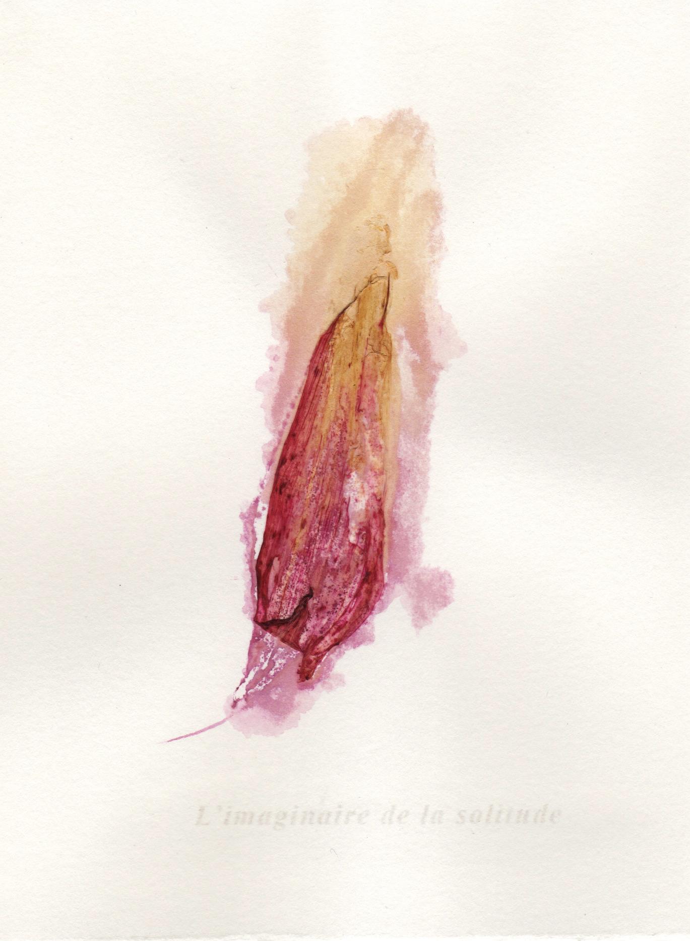 """Jérémie Bennequin, """"L'imaginaire de la solitude"""", pigment naturel de fleur sur papier,16 x 12 cm, 2016"""