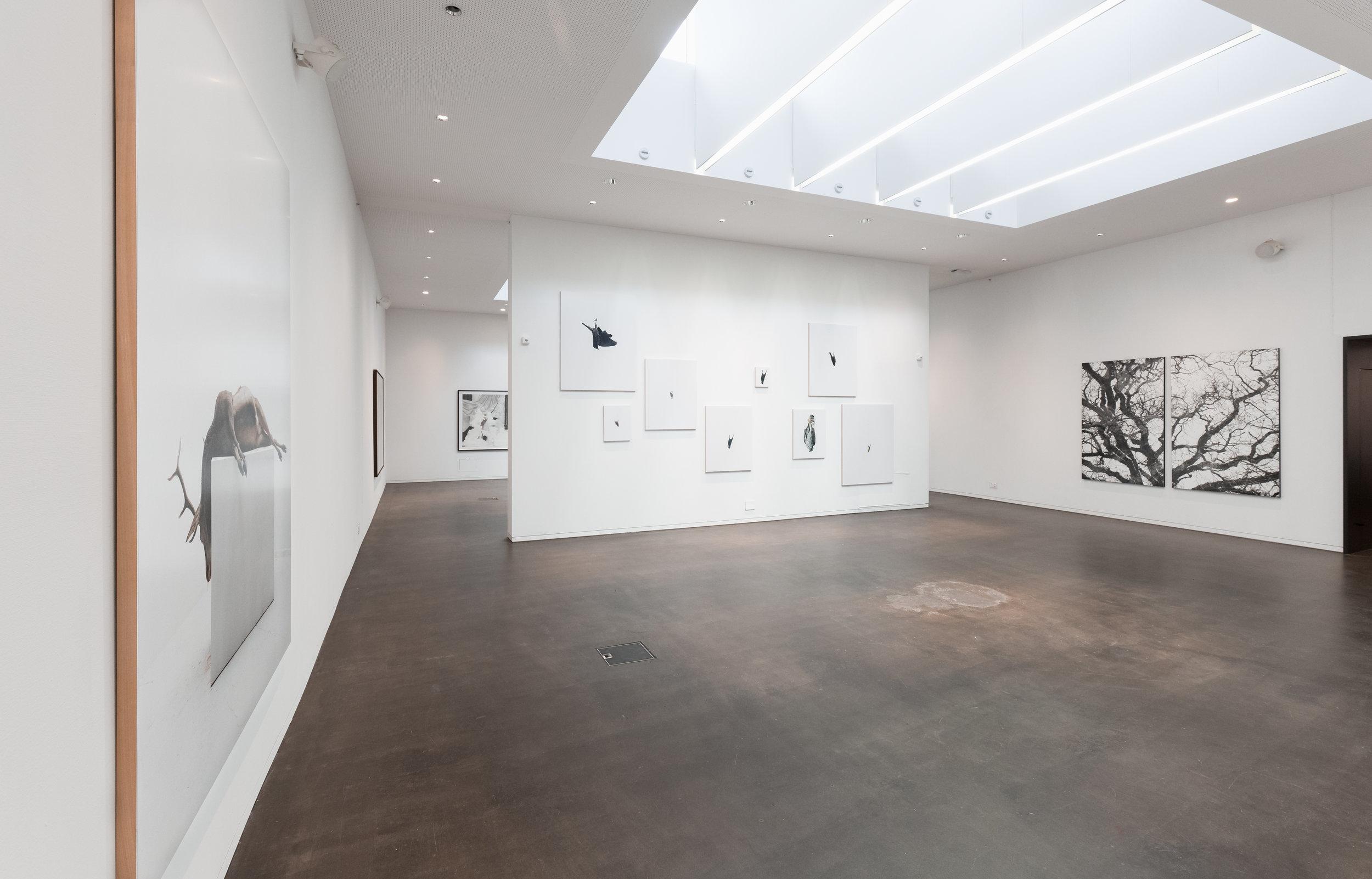 Vue d'exposition, Éric Poitevin. © 2017 Galerie C, Suisse. Tous droits réservés.