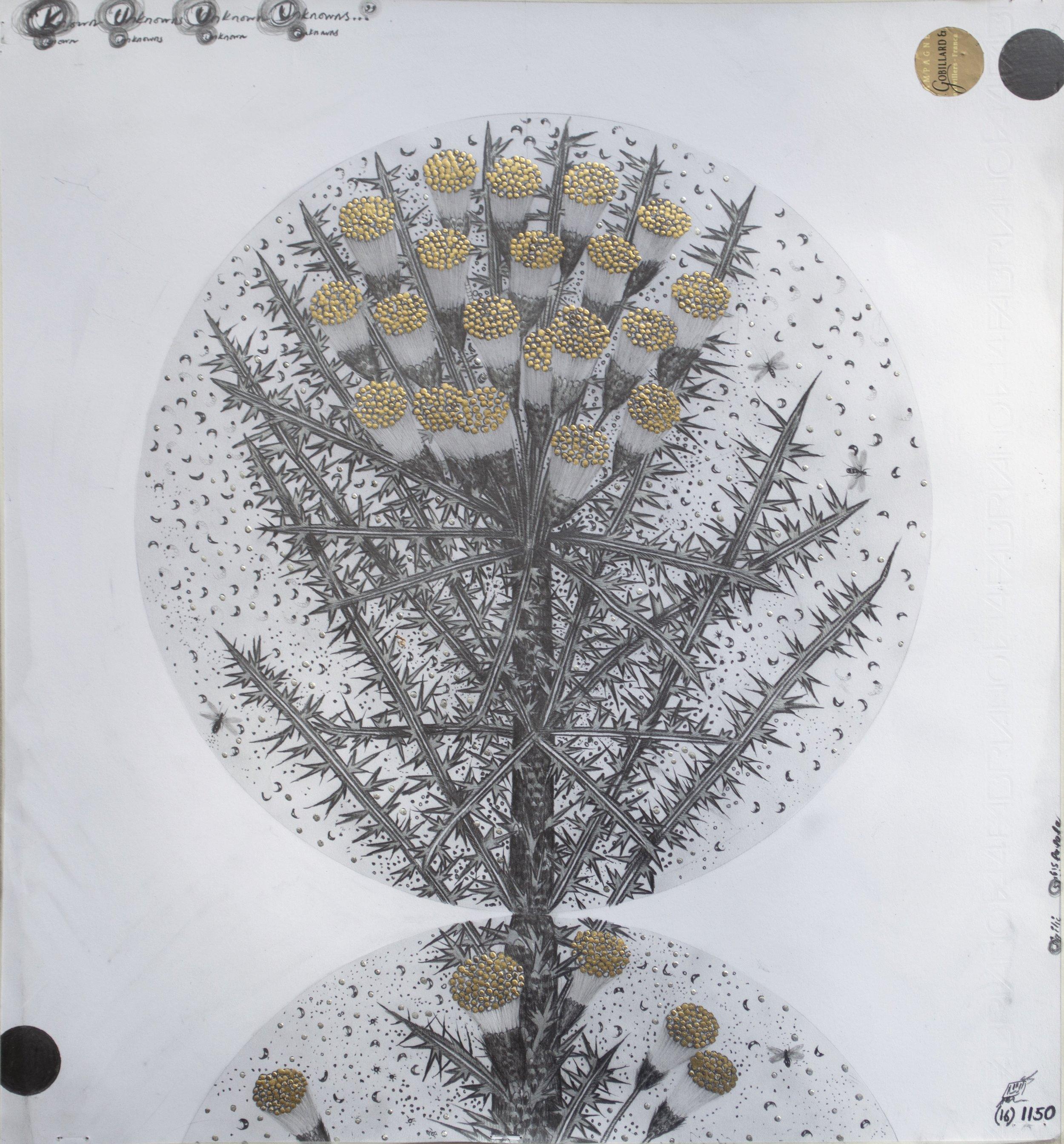 """© Hipkiss, """"1150 - Capitule 16"""", 40x36 cm, mine de plomb, encre argentée et feuille d'or blanc sur papier Fabriano 4, 2018, Courtesy Galerie C"""