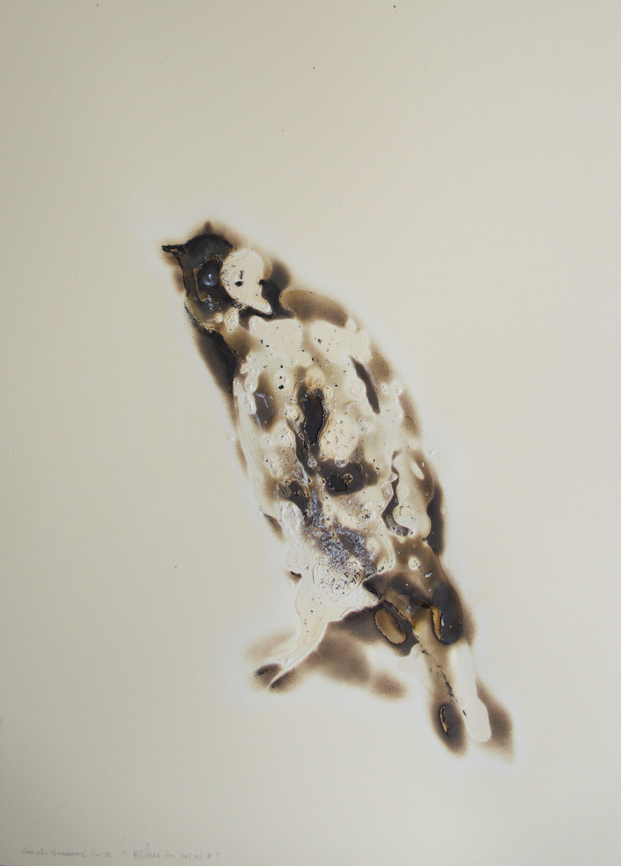 """© Lionel Sabatté, """"Bûcher du 20/10/18"""", brûlures et acrylique sur papier, 80x60 cm, 2018, Courtesy Galerie C"""