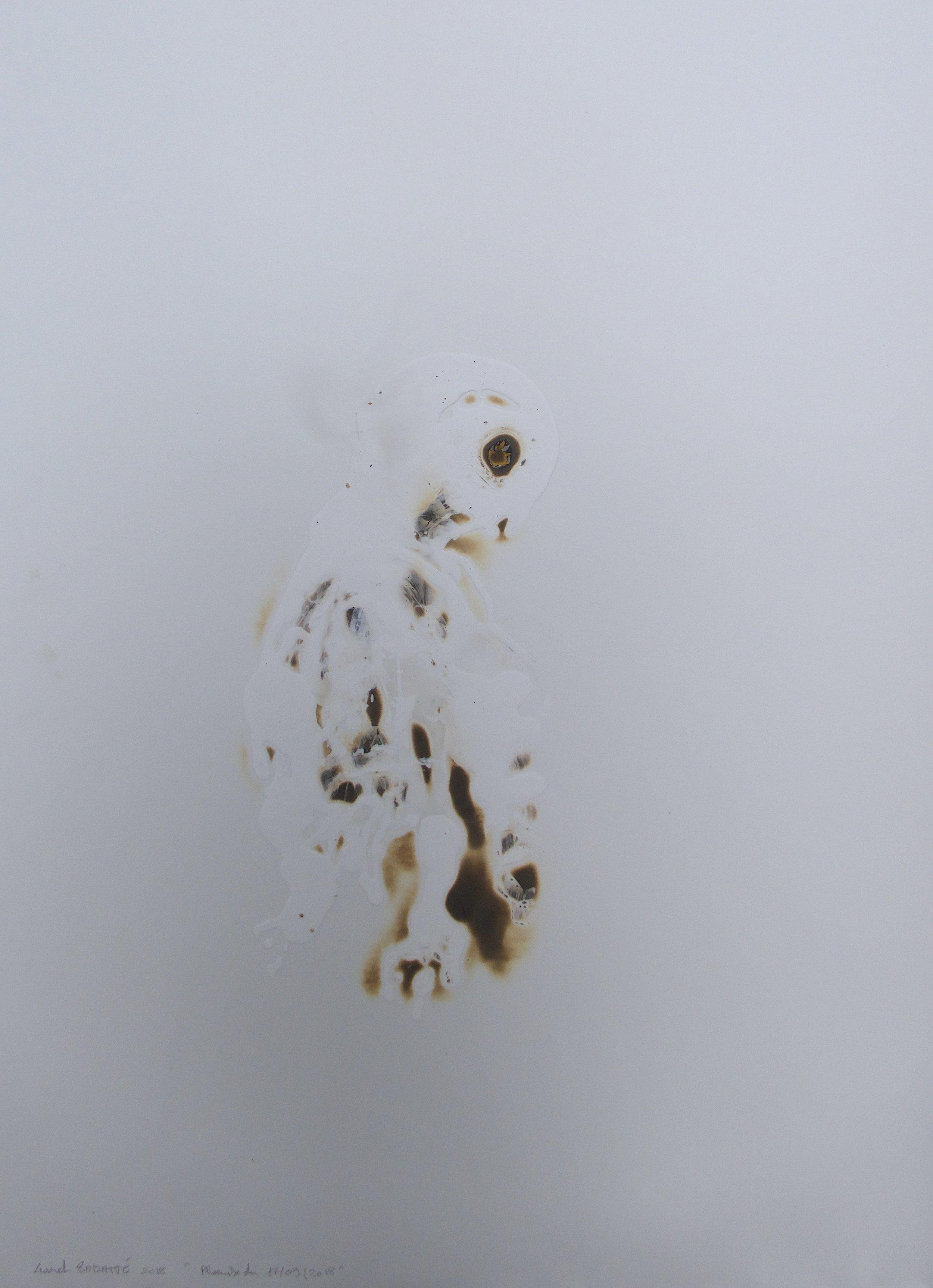 """© Lionel Sabatté, """"Phoenix du 17/09/2018, """"brûlures et acrylique sur papier, 80x60 cm, 2018, Courtesy Galerie C"""