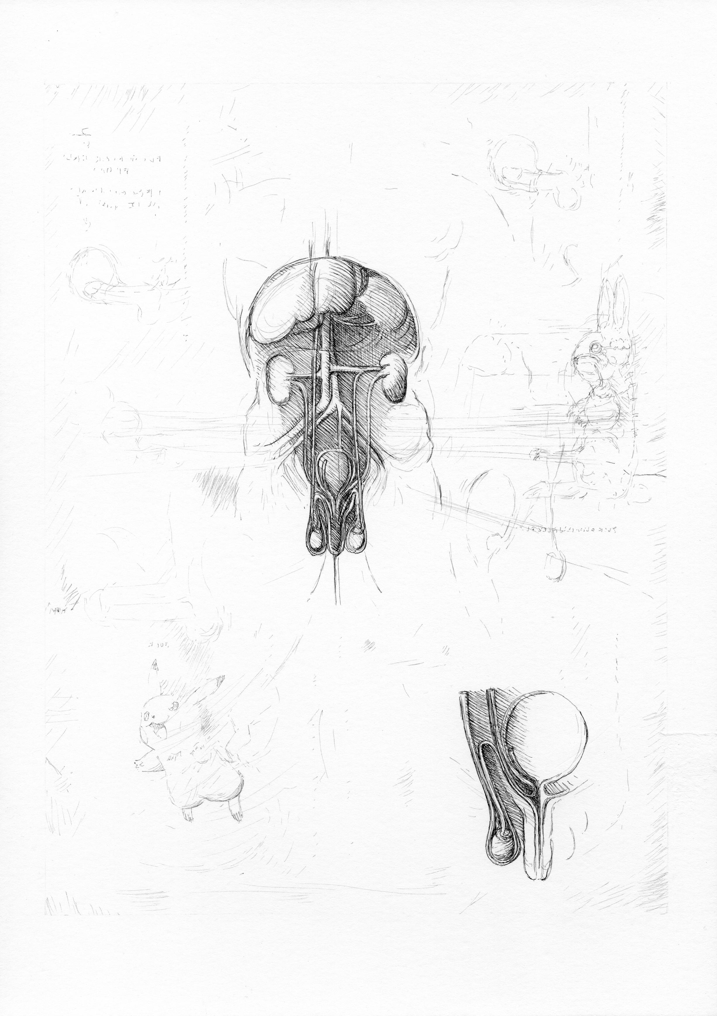 """© Nicolas Darrot, """"Sans titre"""" (084L), encre de Chine sur papier, 39,7x42 cm, 2019."""