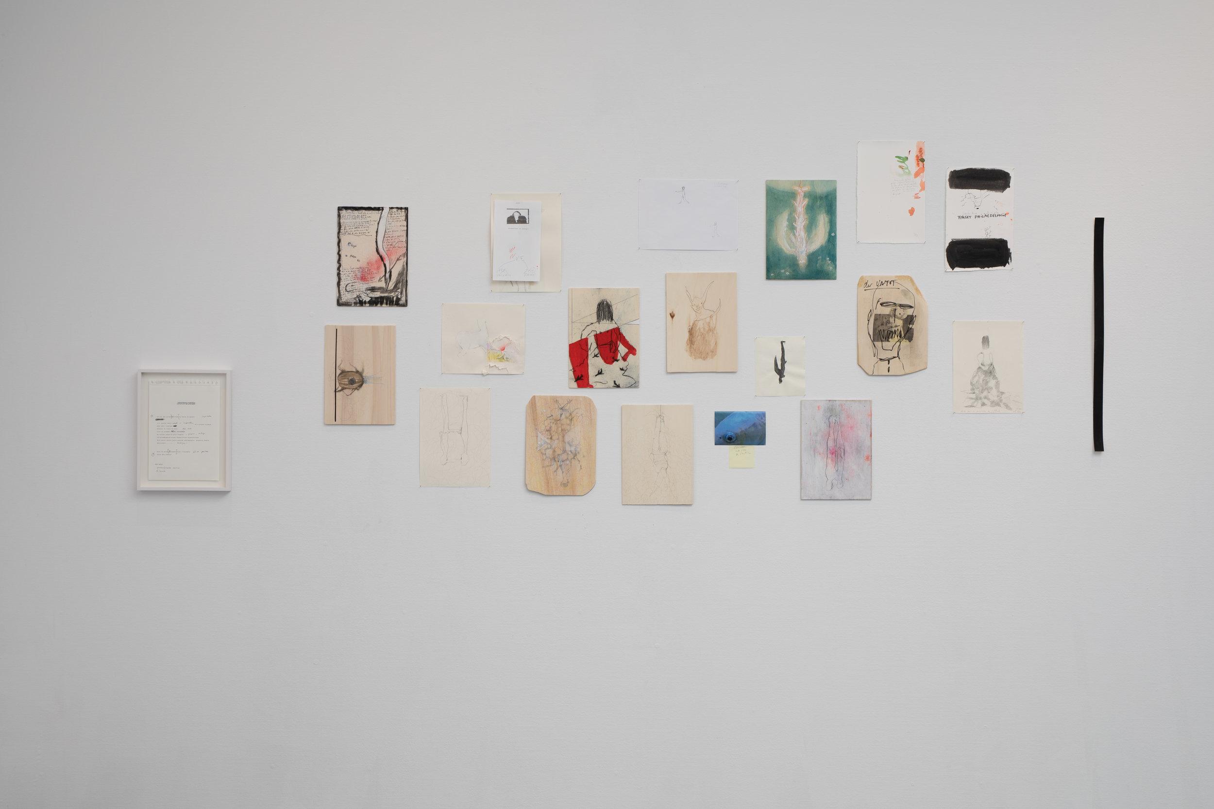 © Valérie Favre, Installation poétique unique composée de 20 dessins et inspirée d'Antonin Artaud, J.W. Goethe et Nancy Spero, 2019.