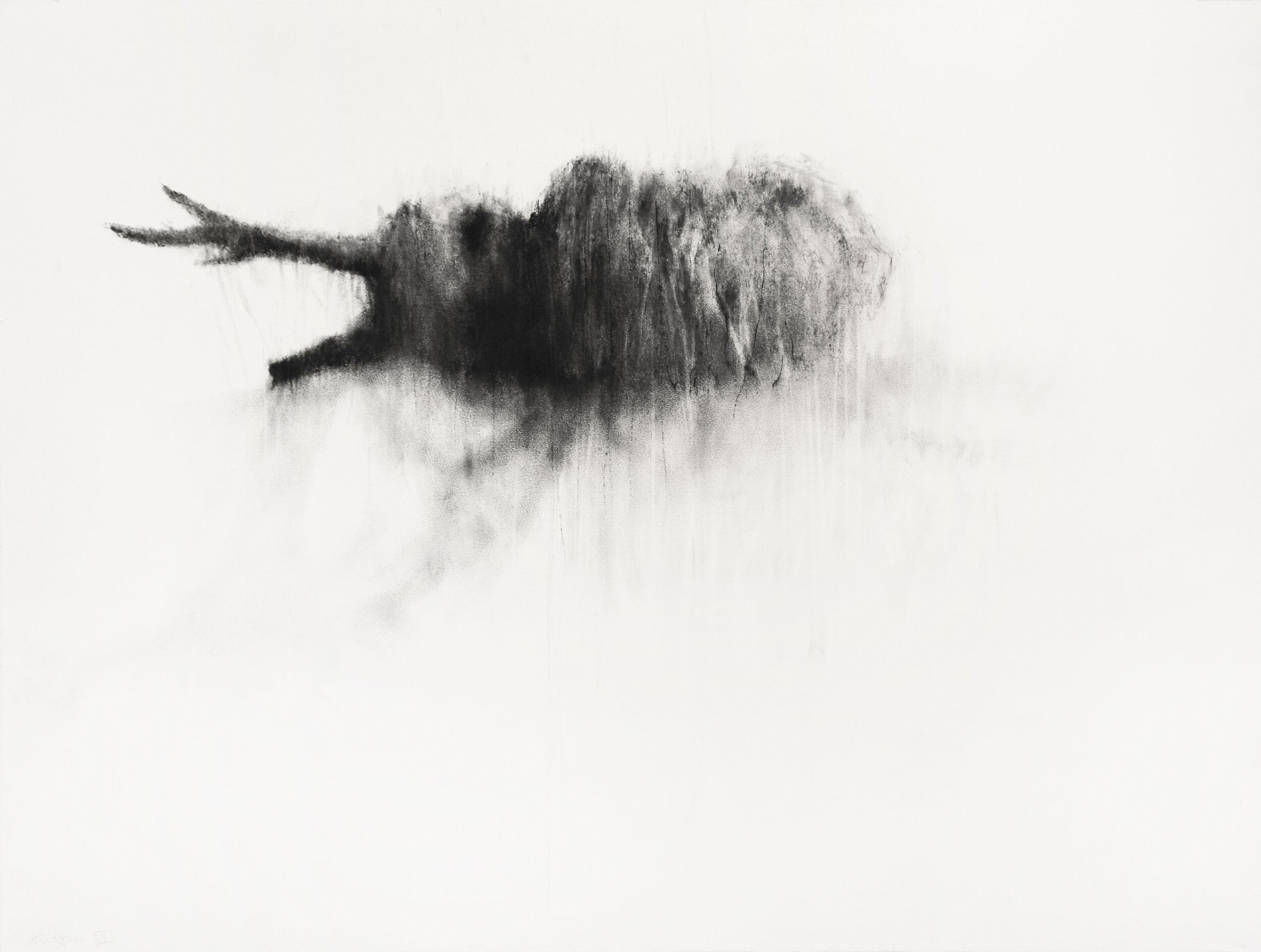 """Guy Oberson, """"Sans titre 1 (zone humaine)"""", pierre noire, 61x80 cm, 2013."""