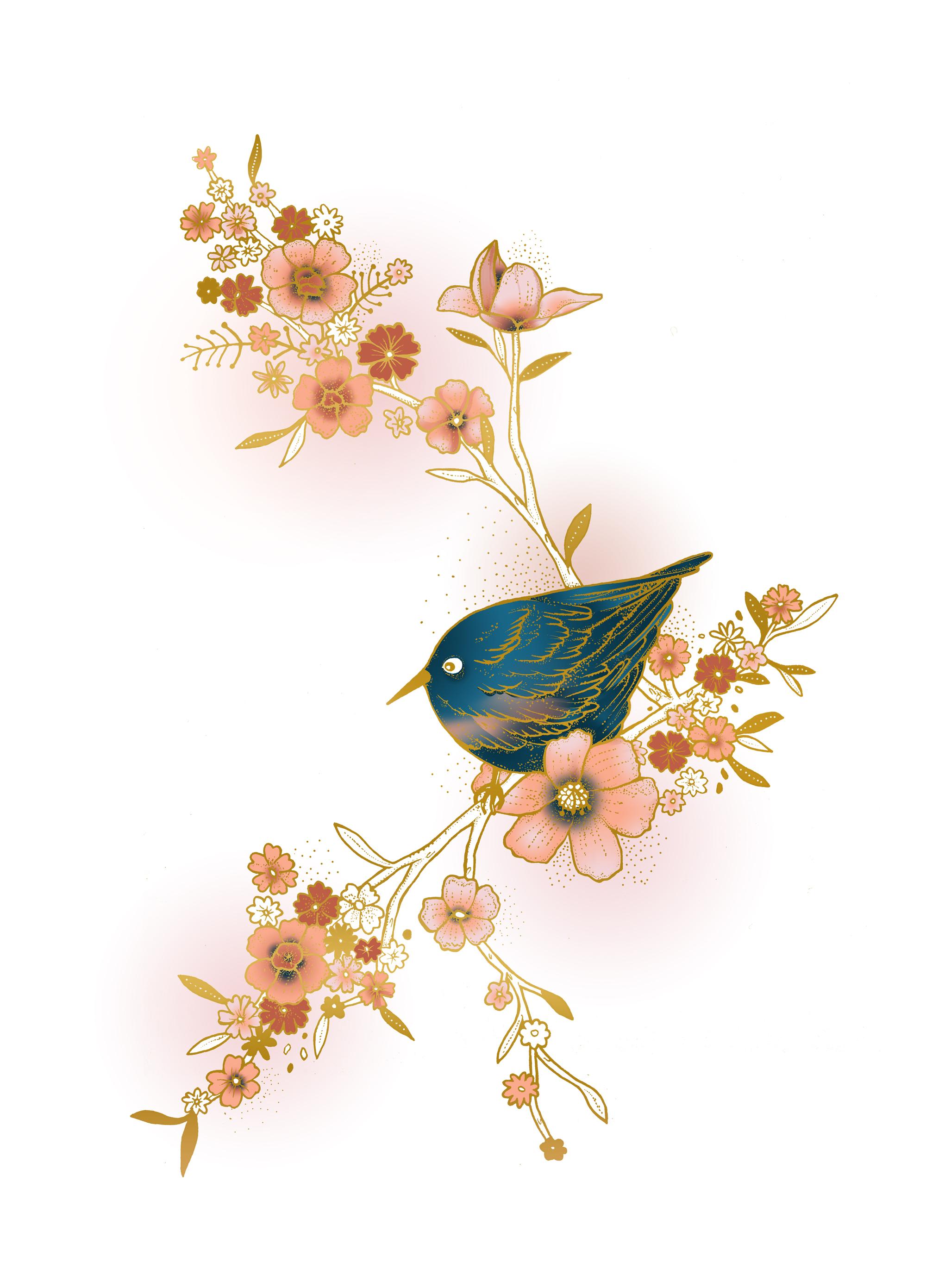 SB-Main-Bird.jpg