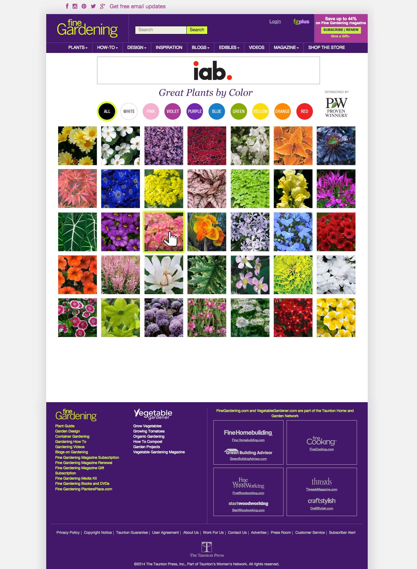 PlantsByColor4.jpg