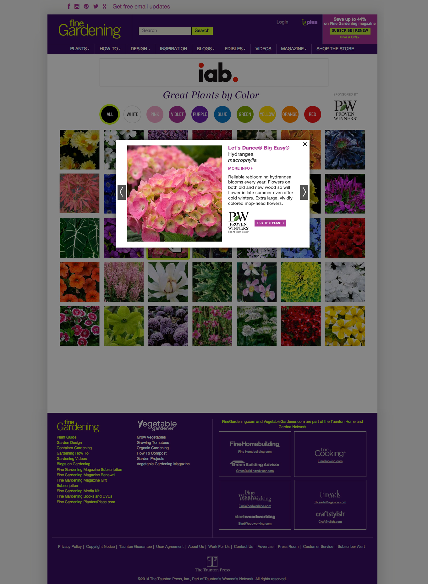 PlantsByColor_overlay2.jpg