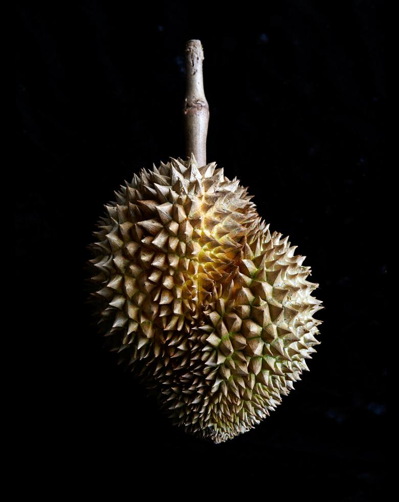 JDeLeo-Durian.jpg