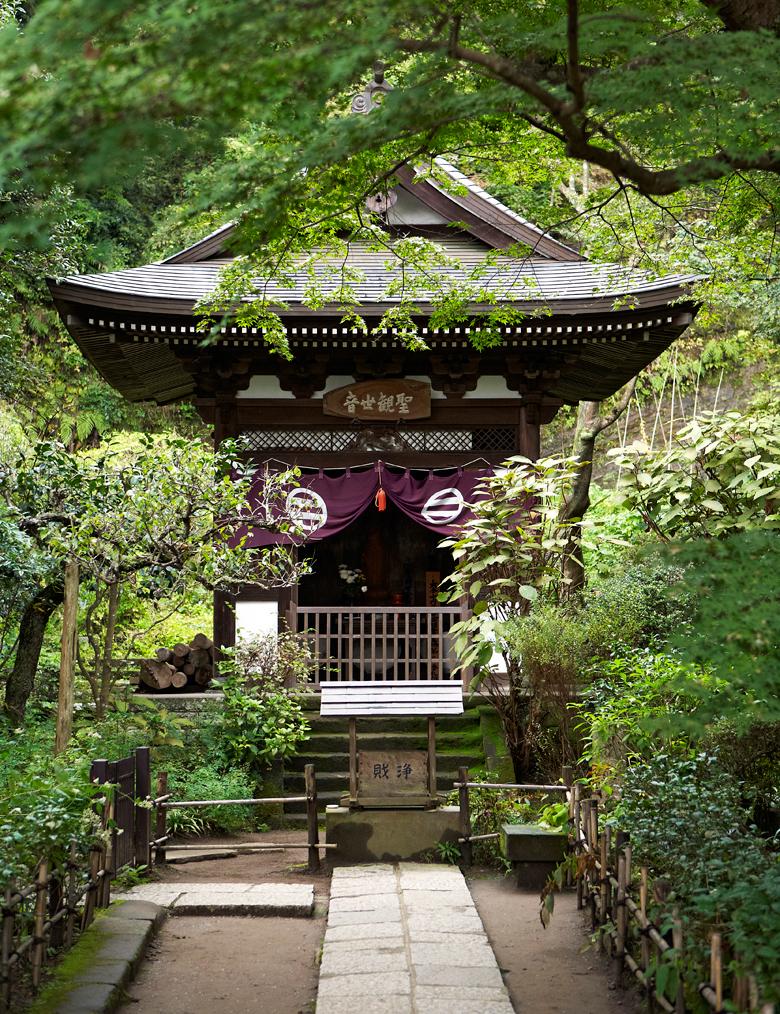 JDeLeo-KamakuraTemple.jpg