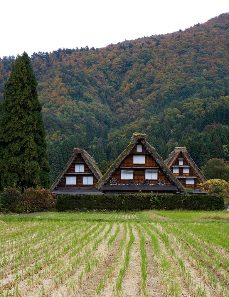 JDeLeo-Shirakawago.jpg