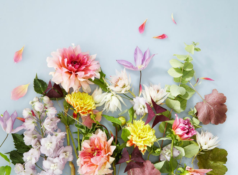 MH-StillTest-Flowers_18258.jpg