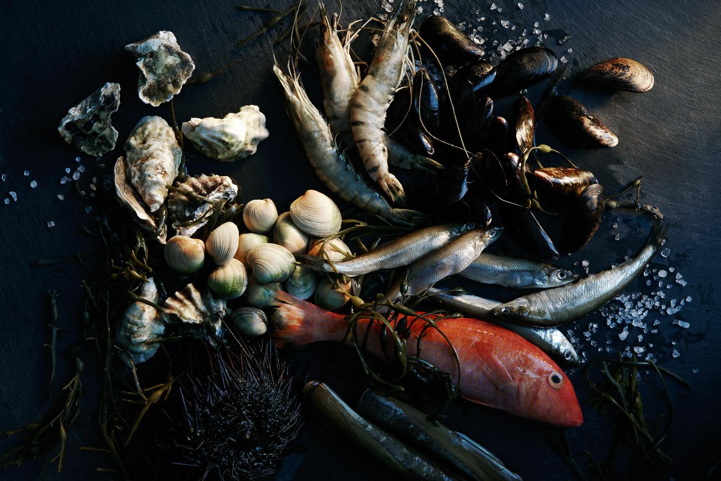 Westfield 2661_Seafood1_Final.jpg