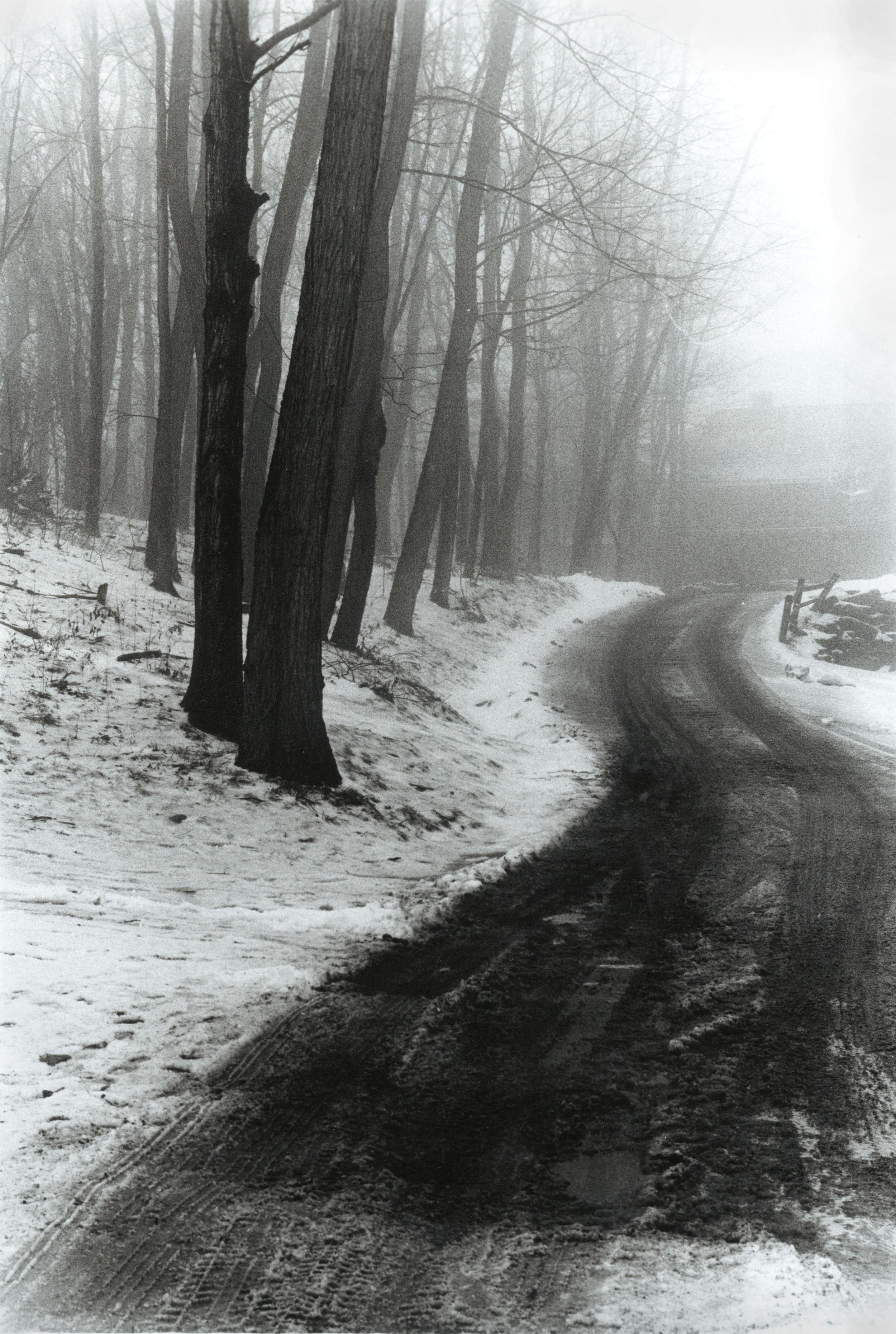 Road in the Snow .jpg
