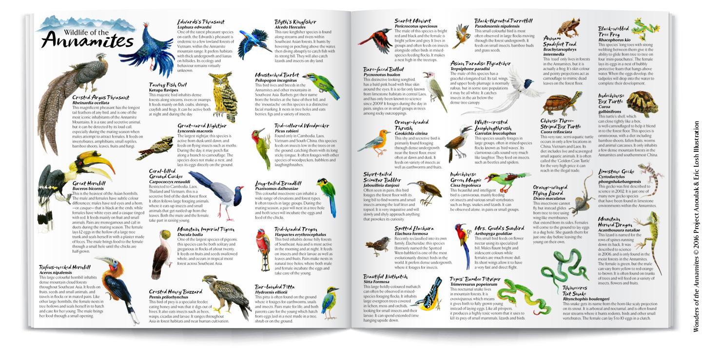 InsidePages-mockups-wildlife.jpg