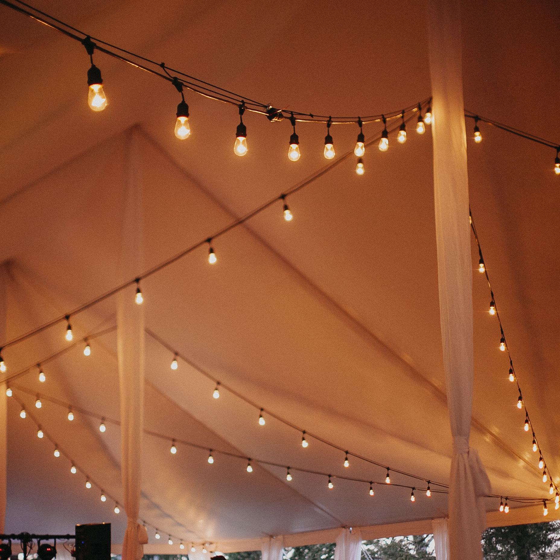 Lighting Professors - $-$$Richmond, VAPHOTO | Meagan Abell