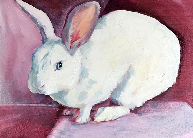 Ruby Oil on board . . . . #bunnyportrait #rabbitrabbitrabbits #whiterabbit #🐰 #alicesrabbit #rabbitmodel #prettypets #kanin #conejo #кролик #oilpaintings #openstudiosuffolk #bentwaters #oldjettersonshow #finishingandfinalising #oldjet #suffolk #british #swedish #contemporaryartists #arts #england #sweden