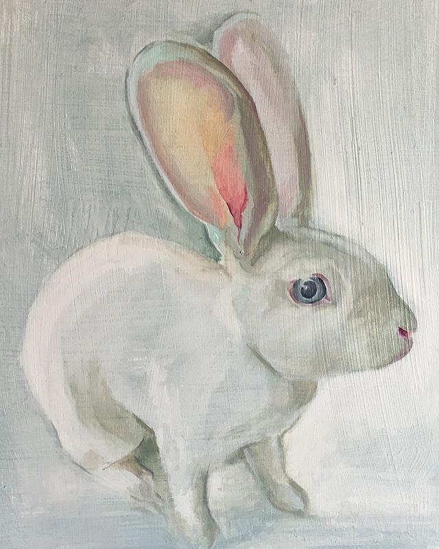 Lucent Oil on board . . . . #bunnyportrait #rabbitrabbitrabbits #whiterabbit #🐰 #alicesrabbit #rabbitmodel #prettypets #kanin #conejo #кролик #oilpaintings #openstudiosuffolk #bentwaters #oldjetonshow #finishingandfinalising #oldjet #suffolk #british #swedish #contemporaryartists #arts #england #sweden @oldjet #artexhibition