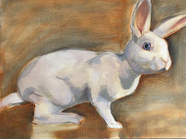 Honey Oil on board . . . . #bunnyportrait #rabbitrabbitrabbits #whiterabbit #🐰 #alicesrabbit #rabbitmodel #prettypets #kanin #conejo #кролик #oilpaintings #openstudiosuffolk #bentwaters #oldjetonshow #finishingandfinalising #oldjet #suffolk #british #swedish #contemporaryartists #arts #england #sweden @oldjet #exhibition