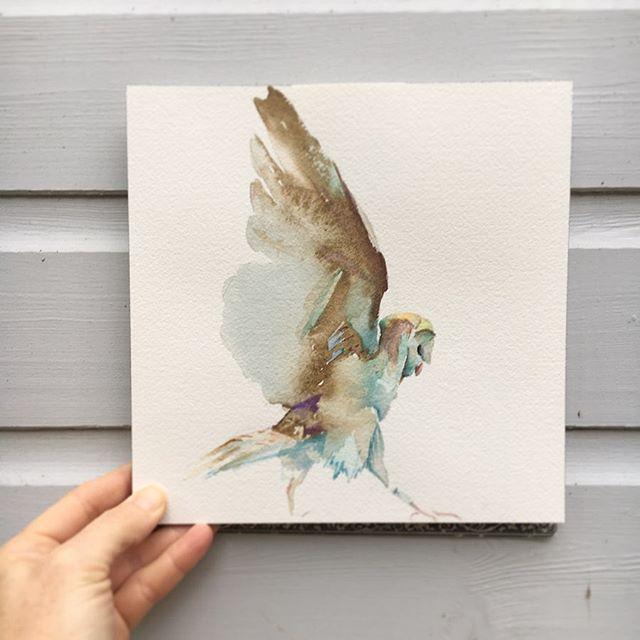 Owl 20 x 20cm . . . #owl #uggla #takingflight #acuarela #акварель #сова #búho #akvarell #watercolour #onarchespaper #todayswork #newwork #suffolk #londoncity #british #swedish #contemporaryartists