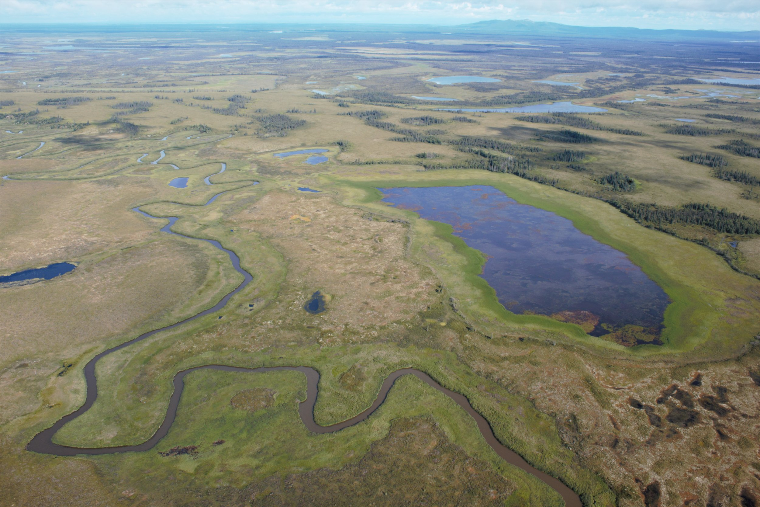 Example of the complex wetland landscape and hydrography in the Kuskokwim River Drainage.  Photo Credit: Kevin Stark