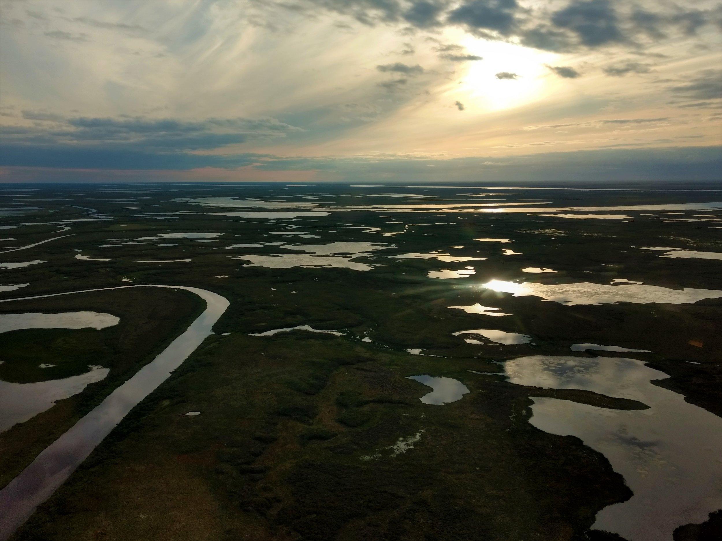 Morning sun on the Kuskokwim plain.  Photo Credit: Andy Robertson