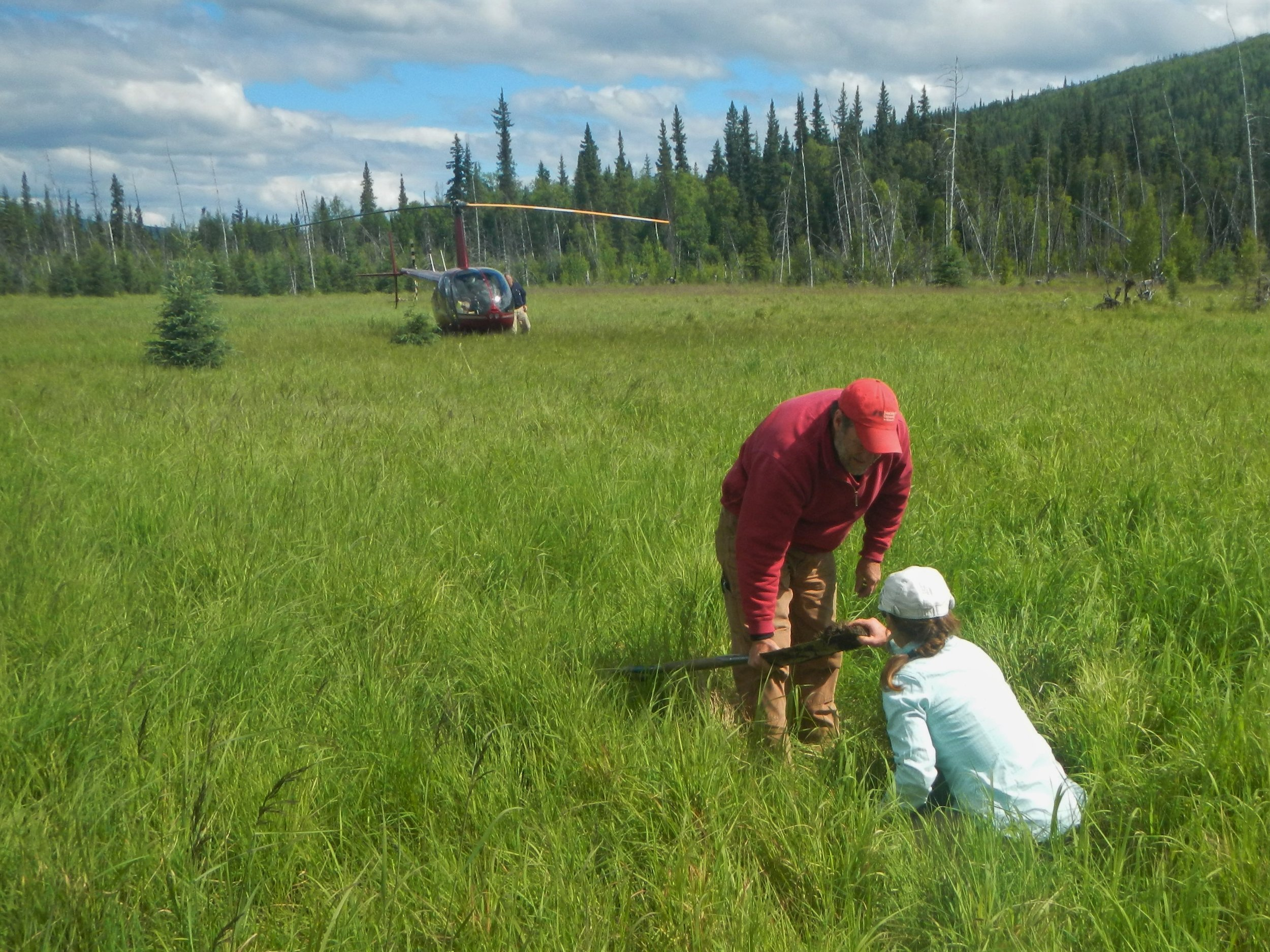 Andy Robertson (Saint Mary's University) and Elizabeth Powers (US Fish & Wildlife Service – Alaska) examining soil characteristics in a saturated emergent wetland.  Photo Credit: Kevin Stark